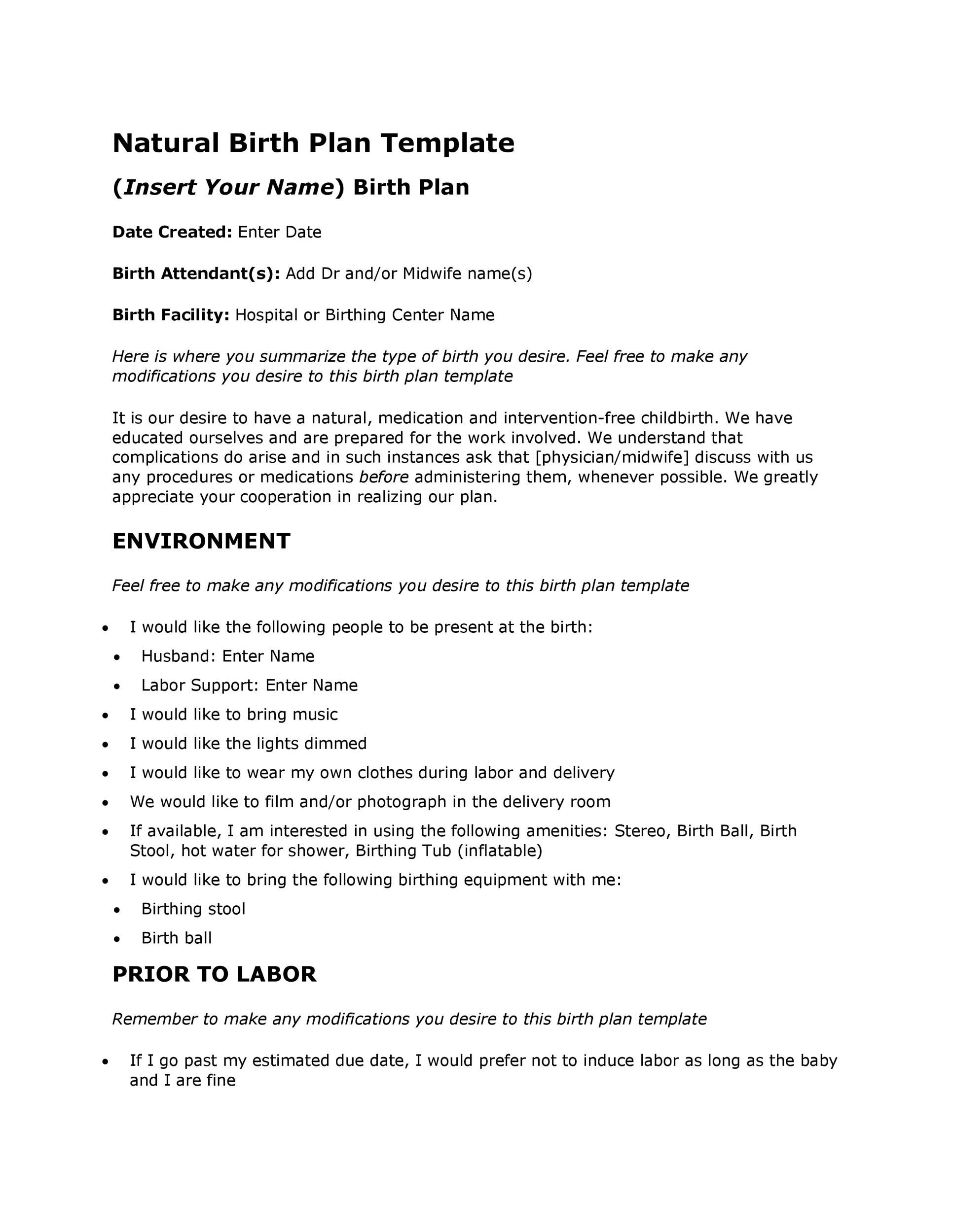 Free Birth Plan Template 44