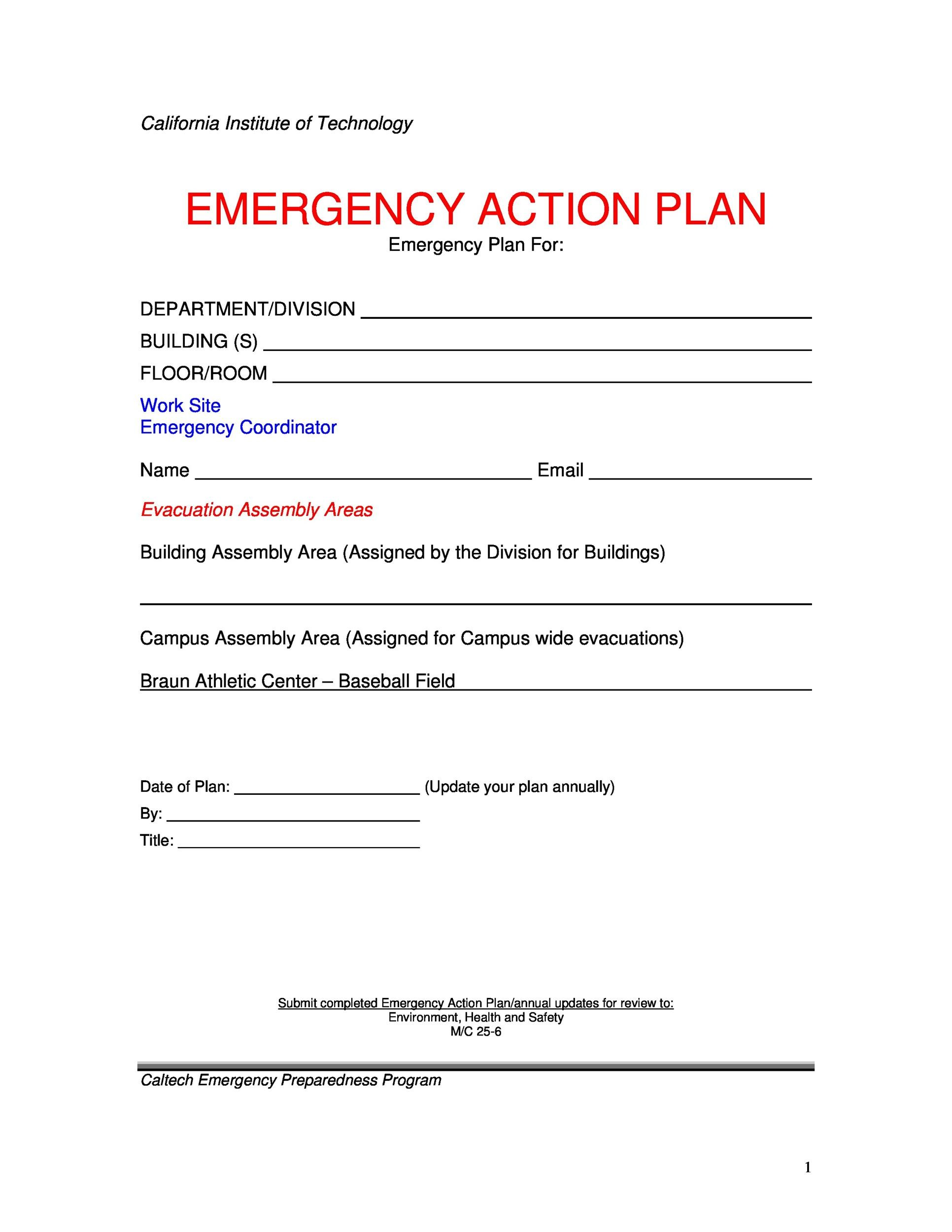 Free Action Plan Templates Corrective Emergency Business - Business action plan example