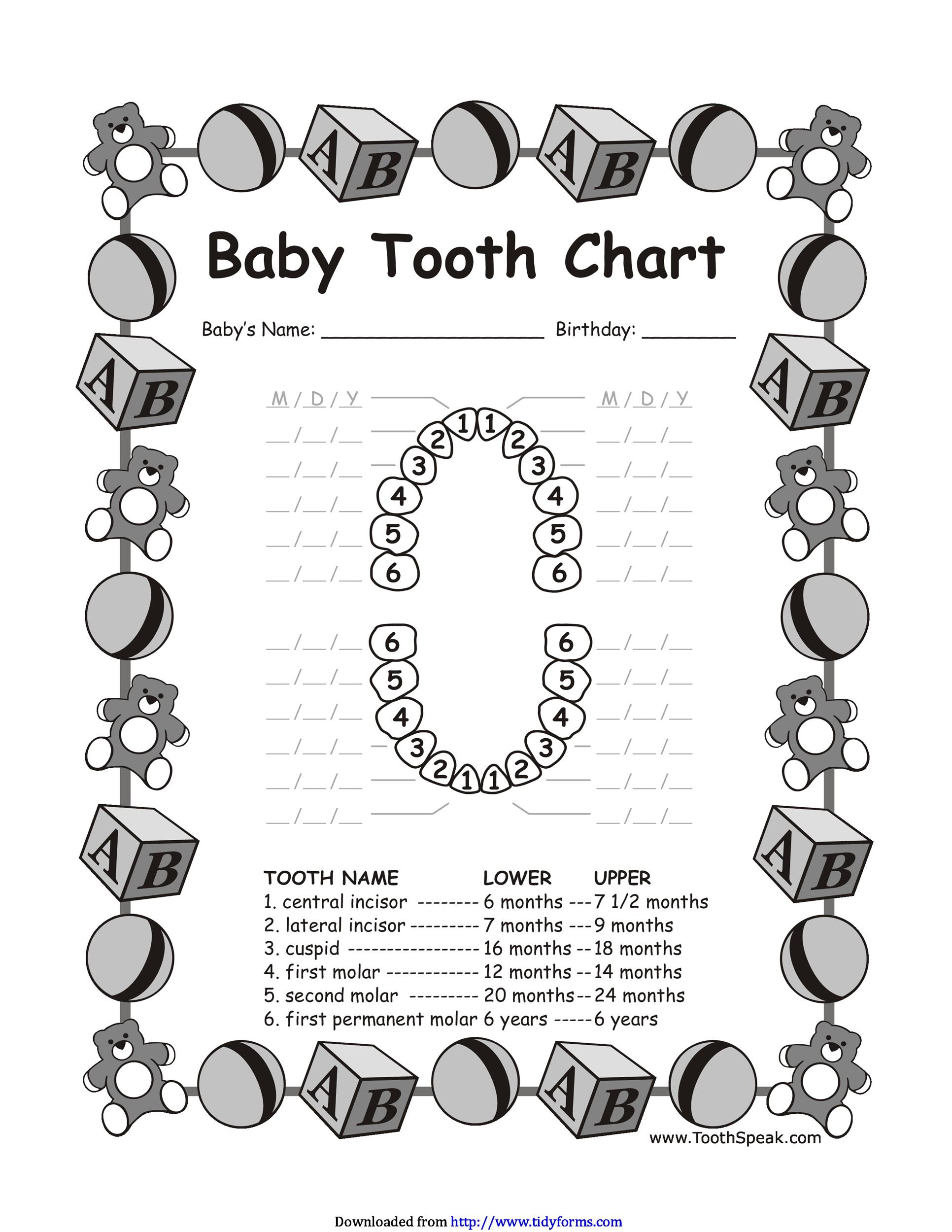 38 Printable Baby Teeth Charts & Timelines - Template Lab