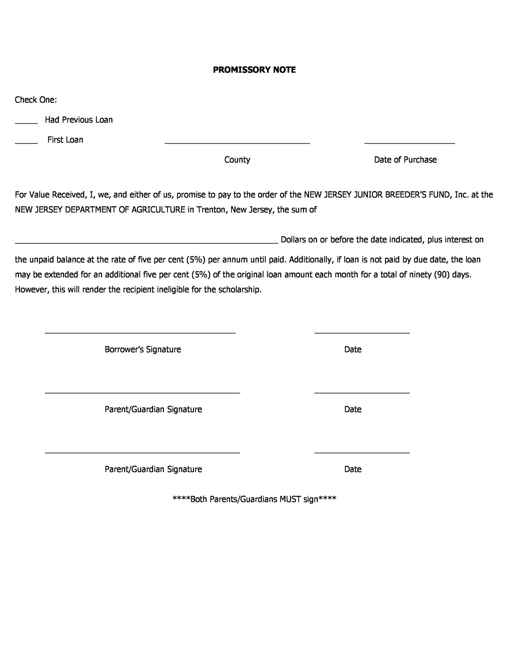 Printable Promissory Note Template 31  Promissory Note Free Download
