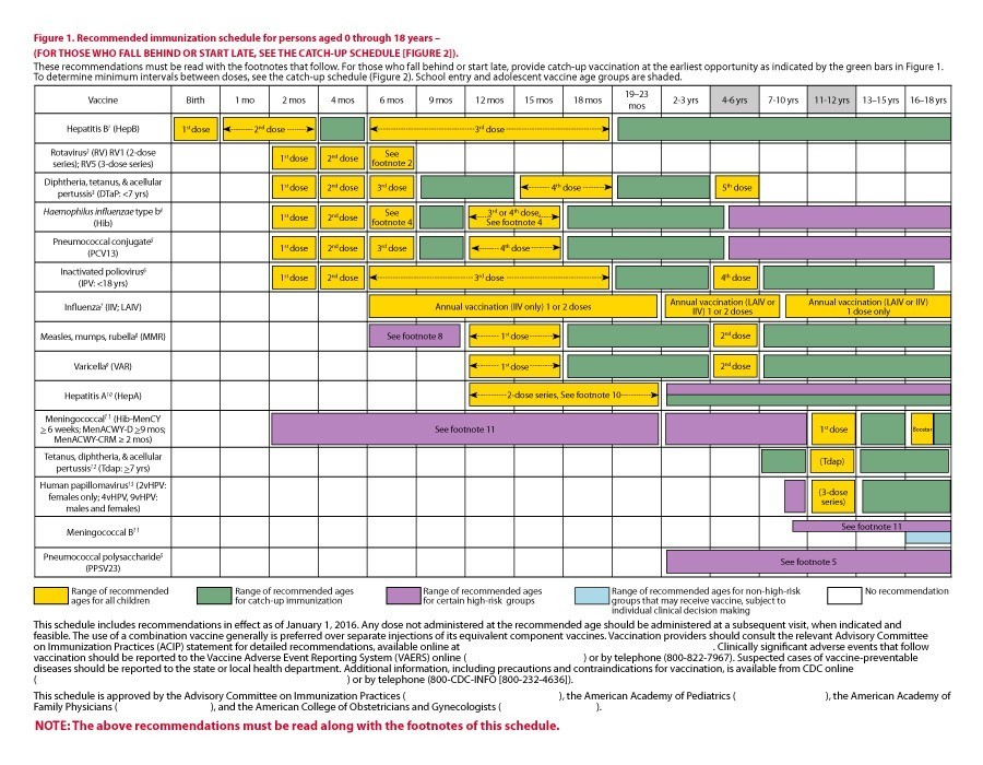 Free vaccination schedule 23