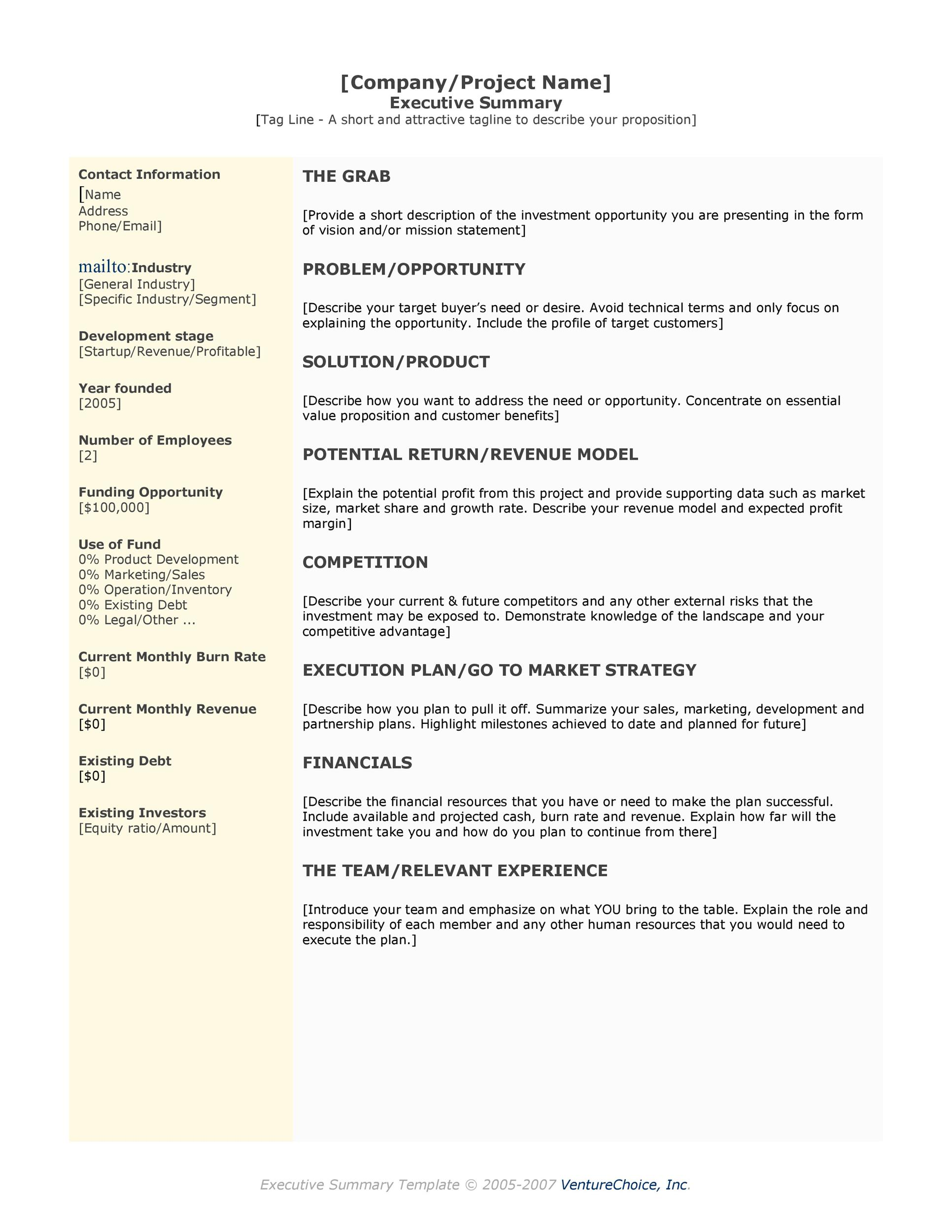 Printable Executive Summary Template 02  It Executive Summary Template