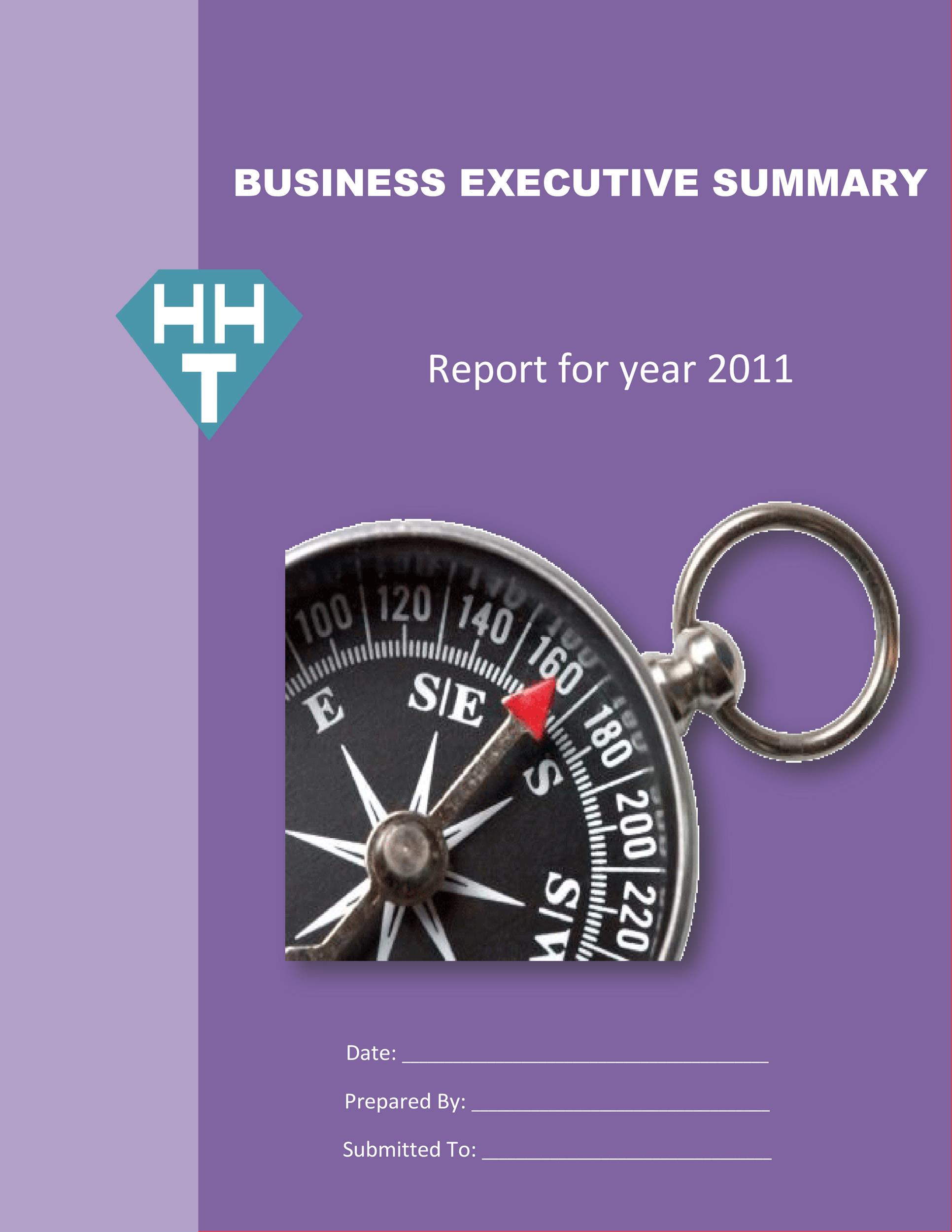 Free Executive Summary Template 08