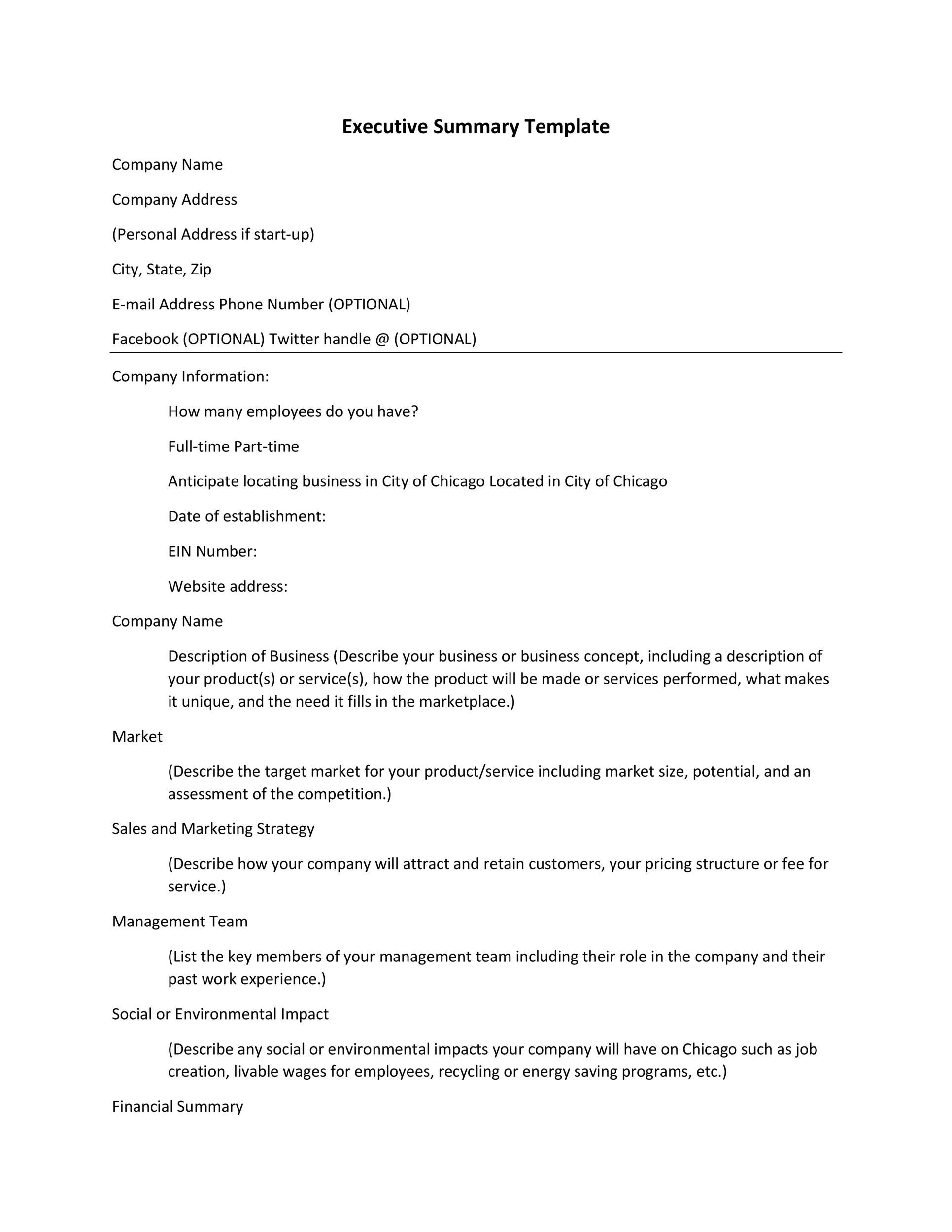 Executive Summary Templates  Business Summary Template