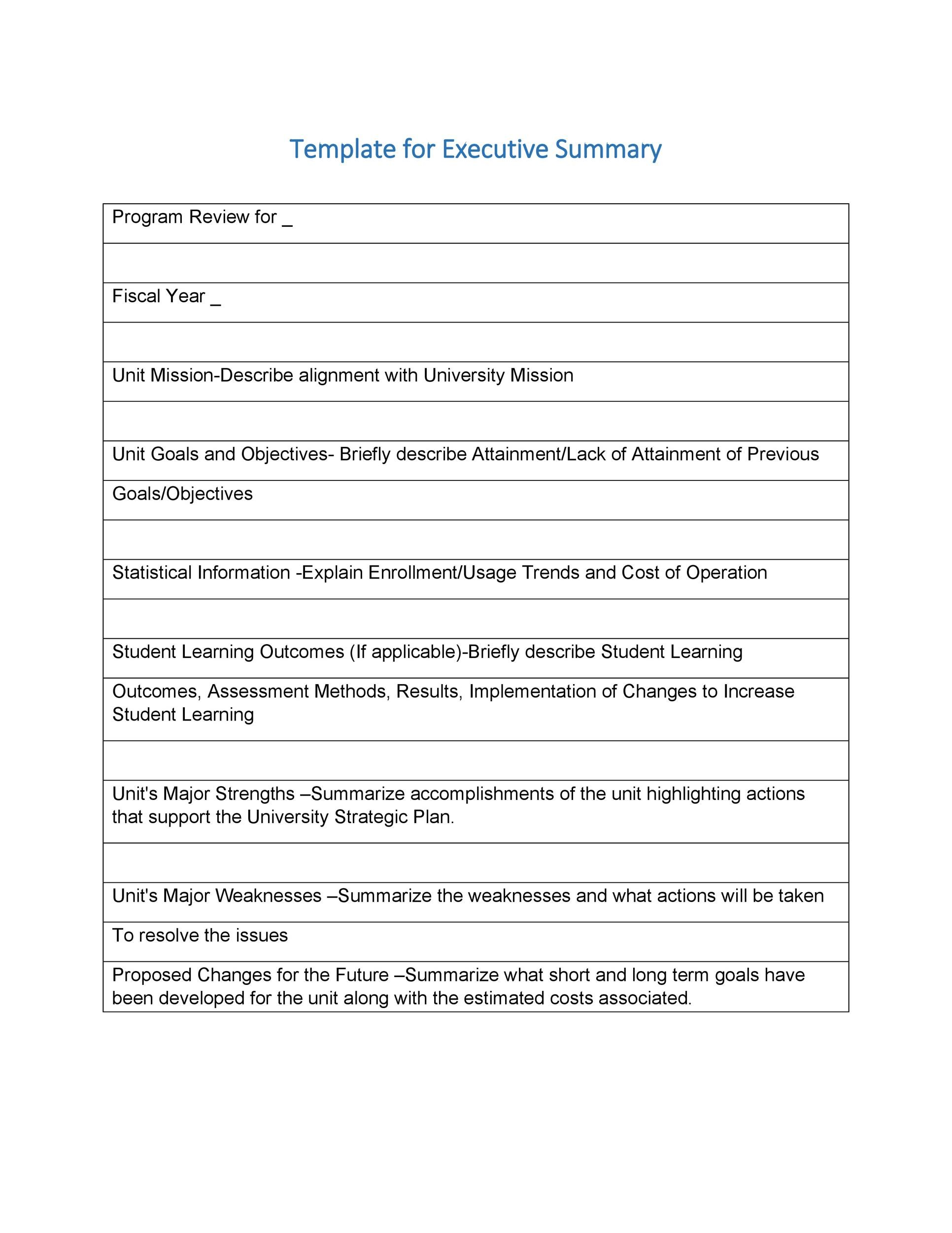 Free Executive Summary Template 14