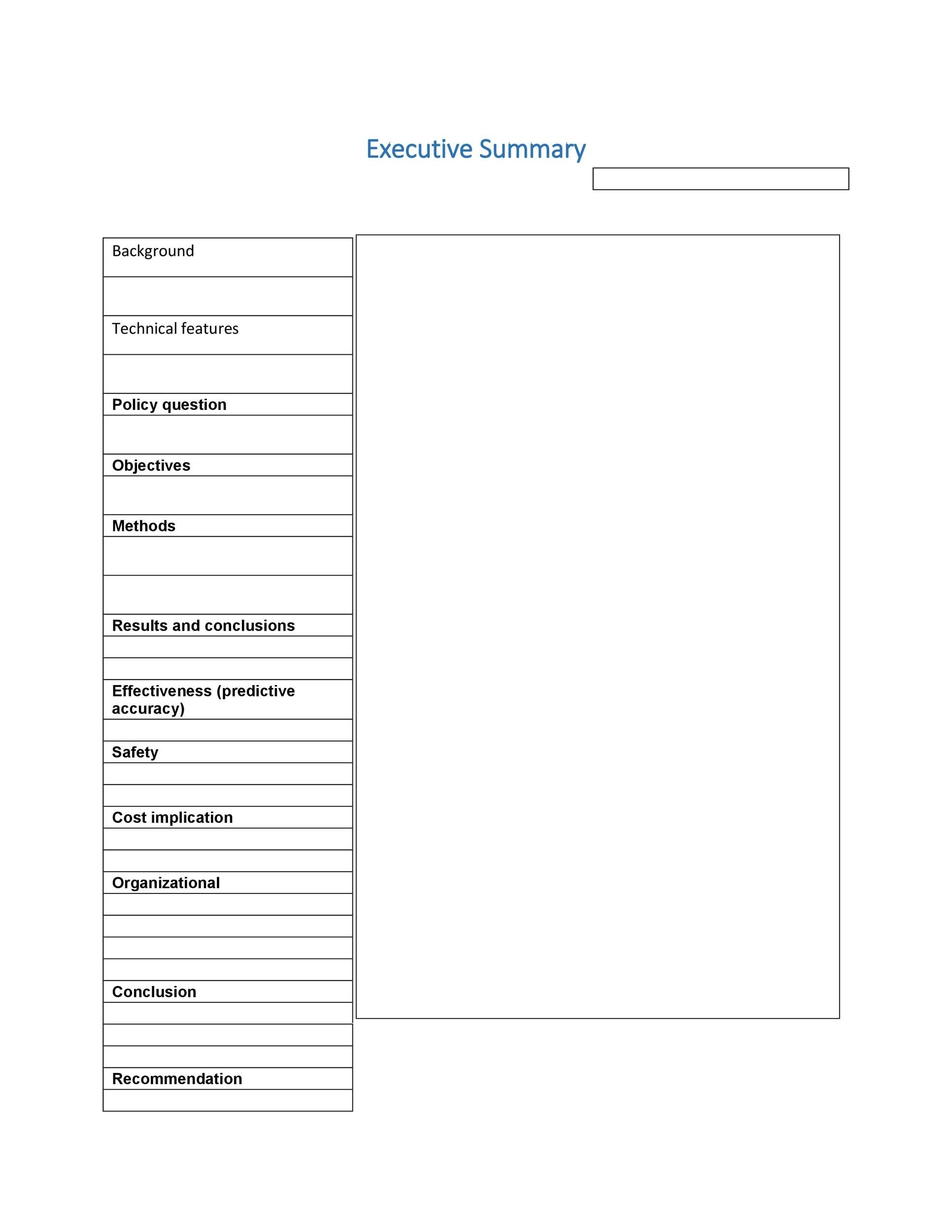 Executive Summary Template 20