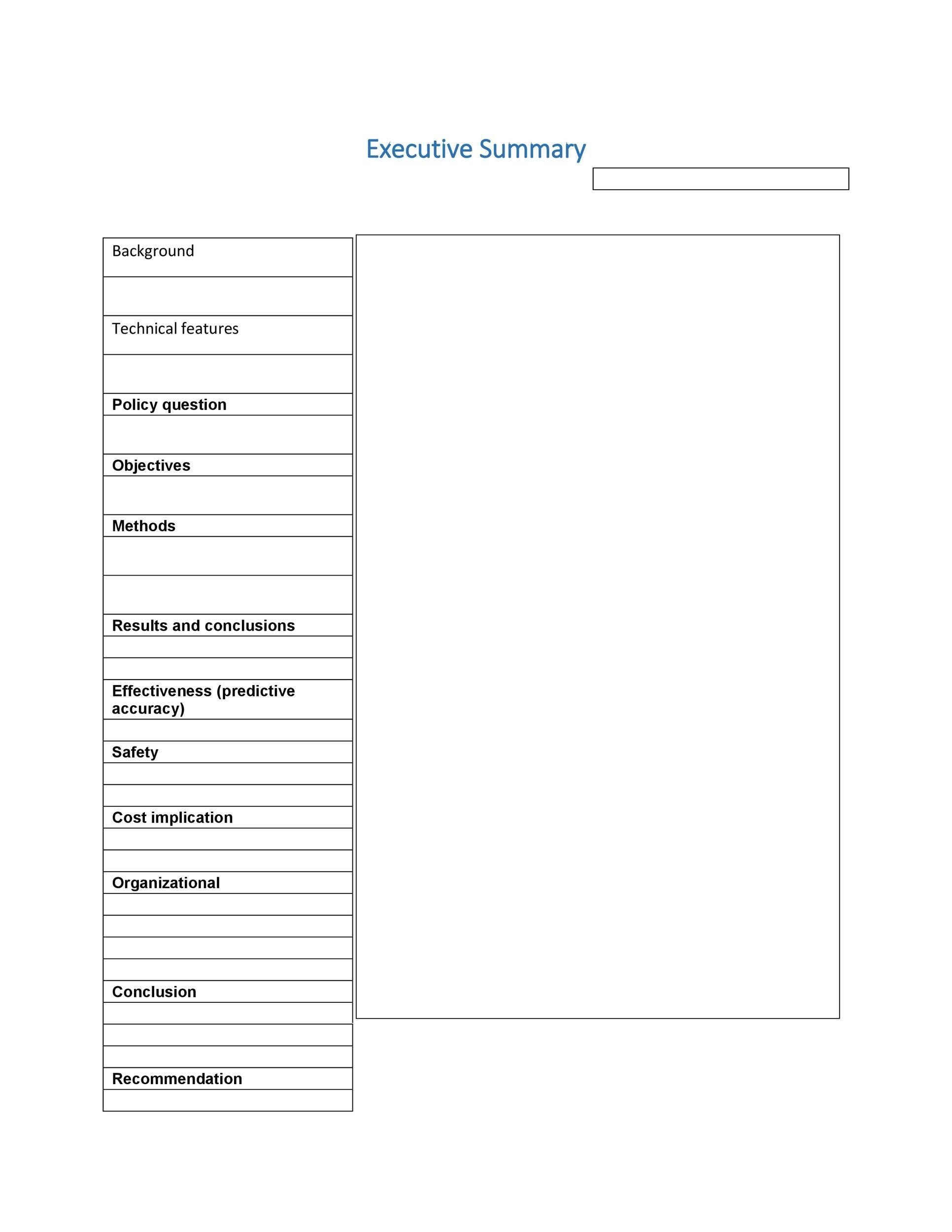 Free Executive Summary Template 20
