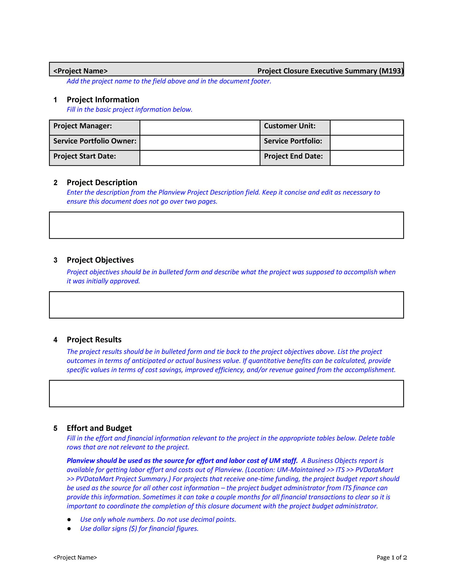 Printable Executive Summary Template 23  Project Executive Summary Template