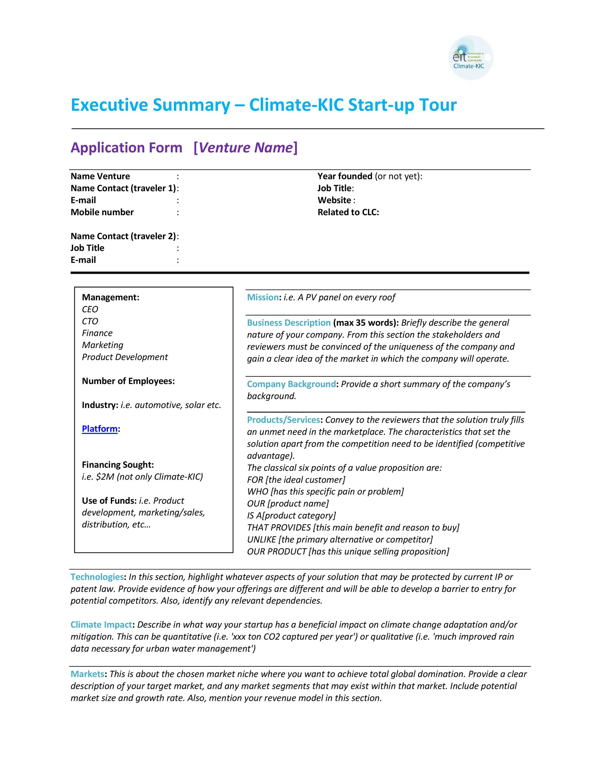 Executive Summary Template 29