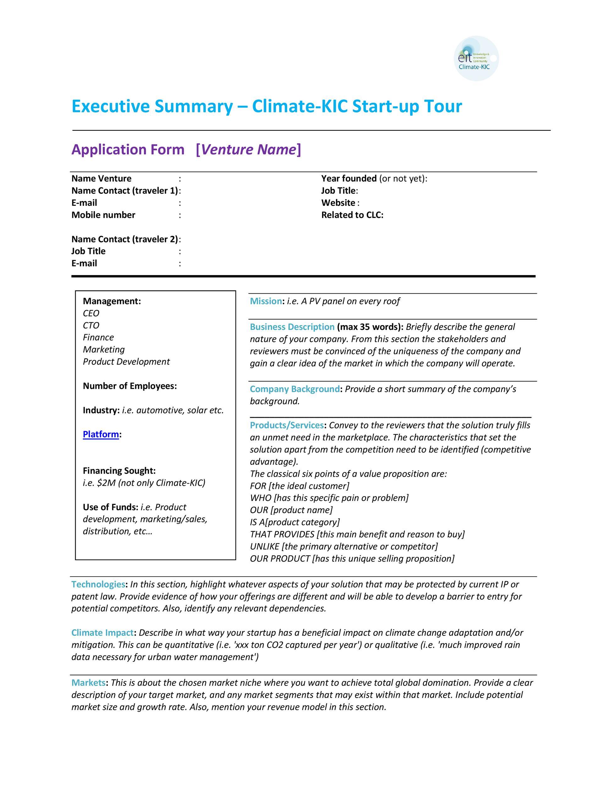 Free Executive Summary Template 29