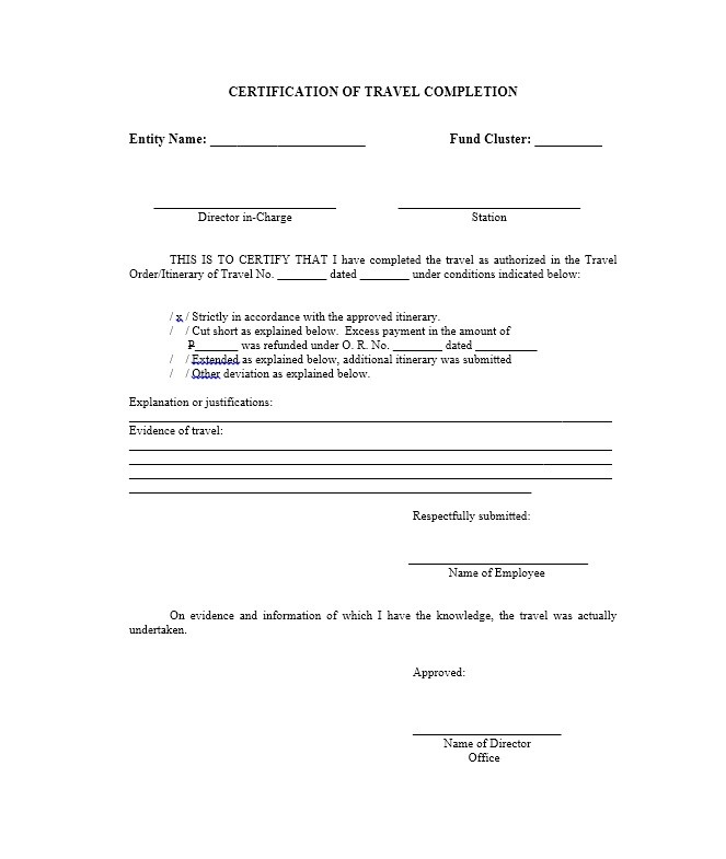 Certificate of Completion Template 17