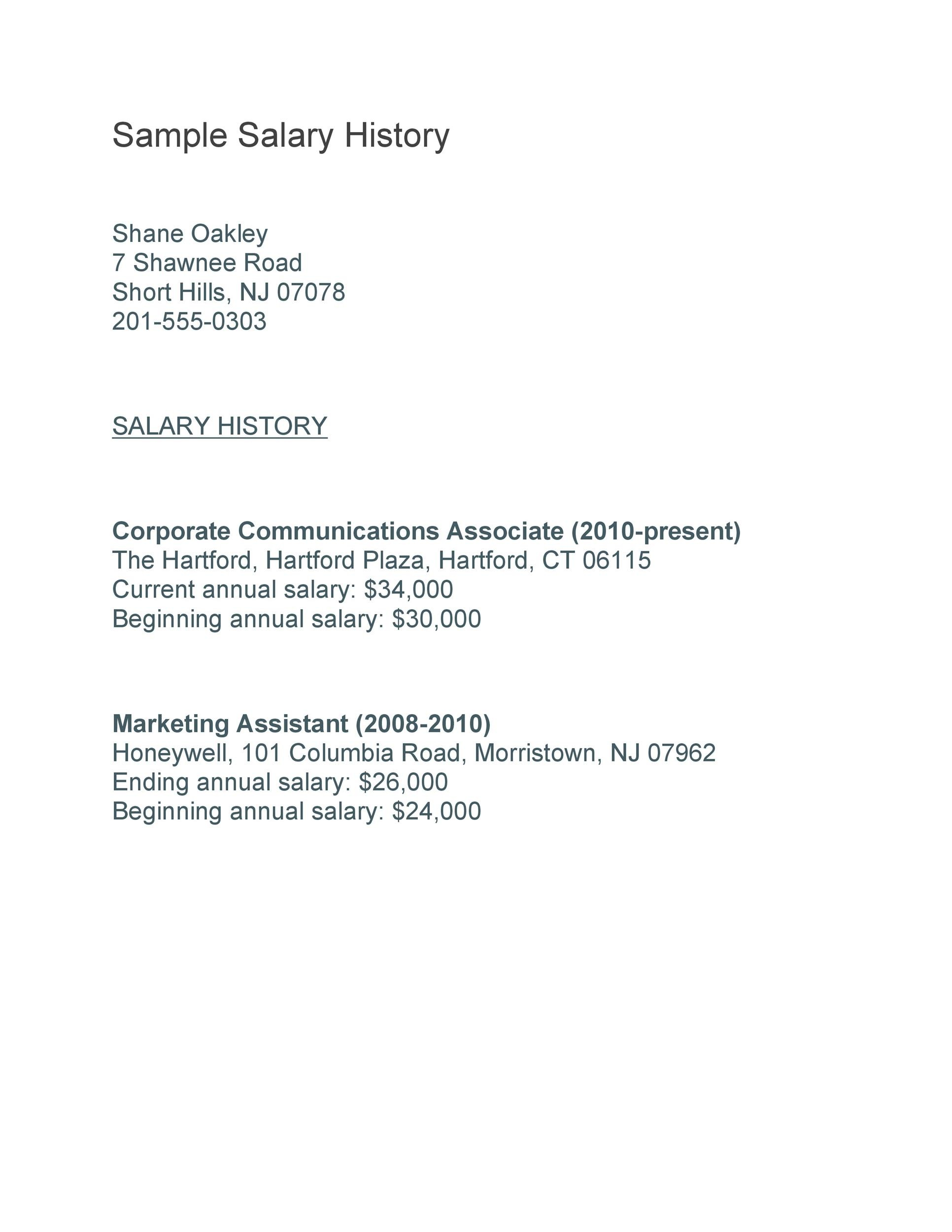 Free Salary History Template 07