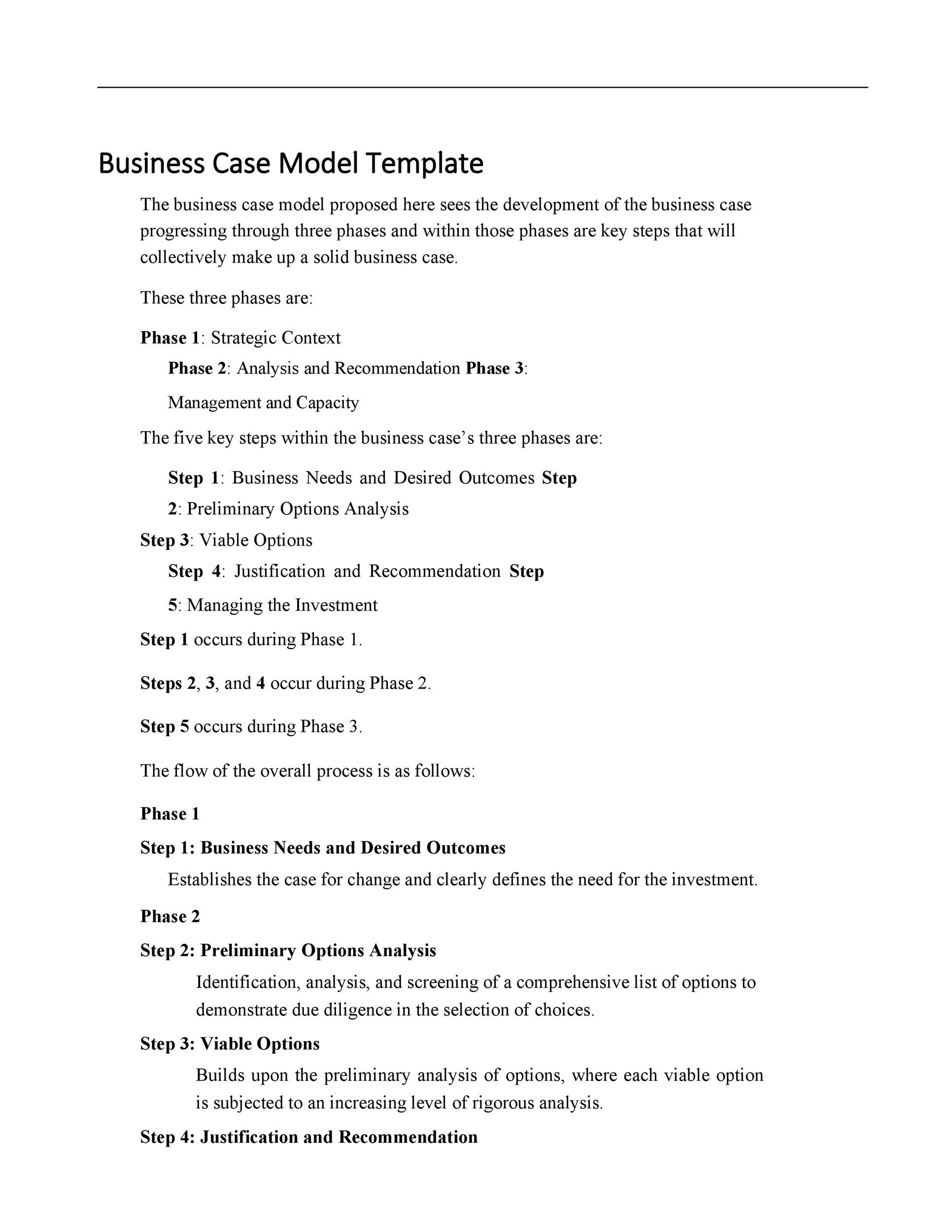 Free Business Case Template 16