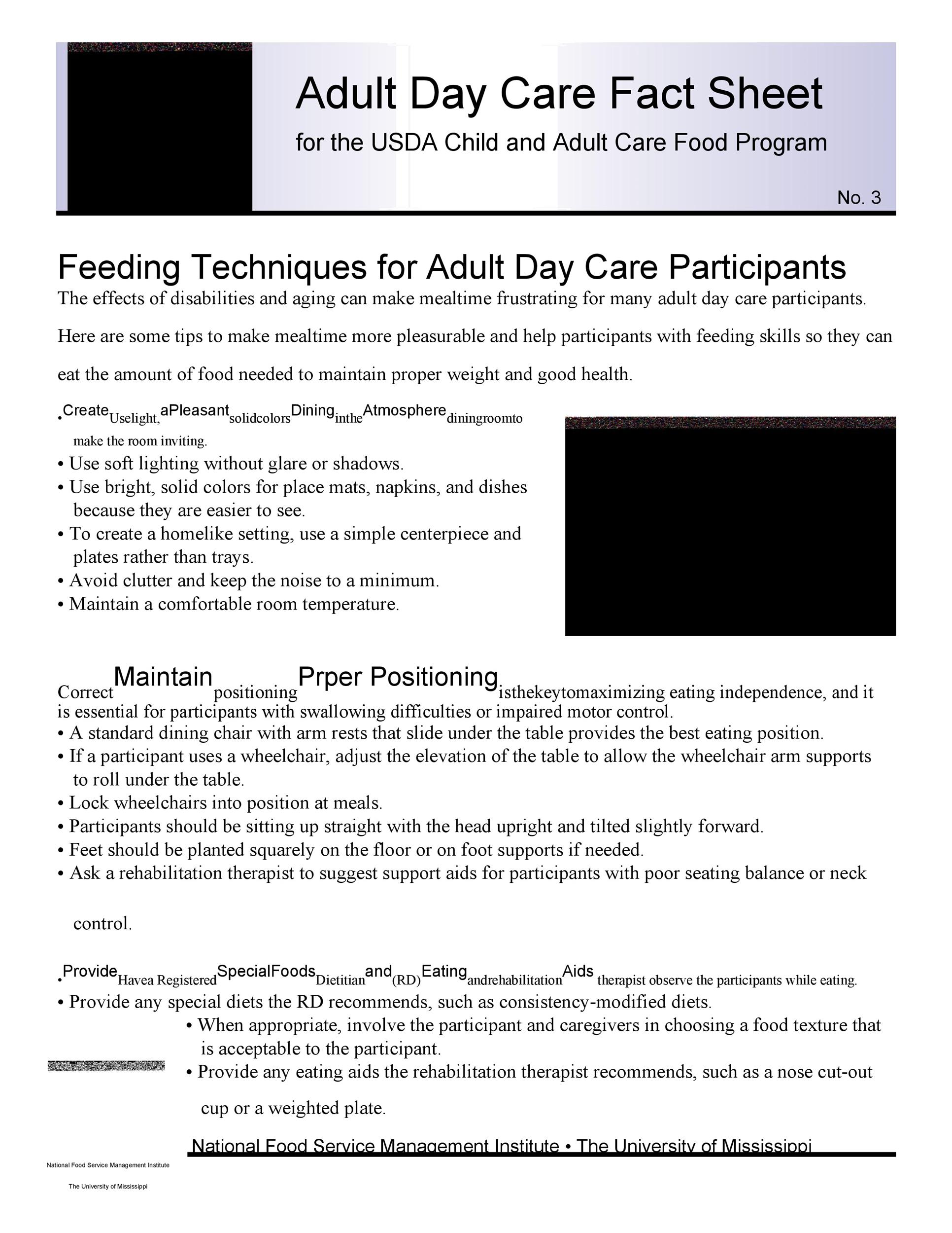 Free Fact sheet Template 42
