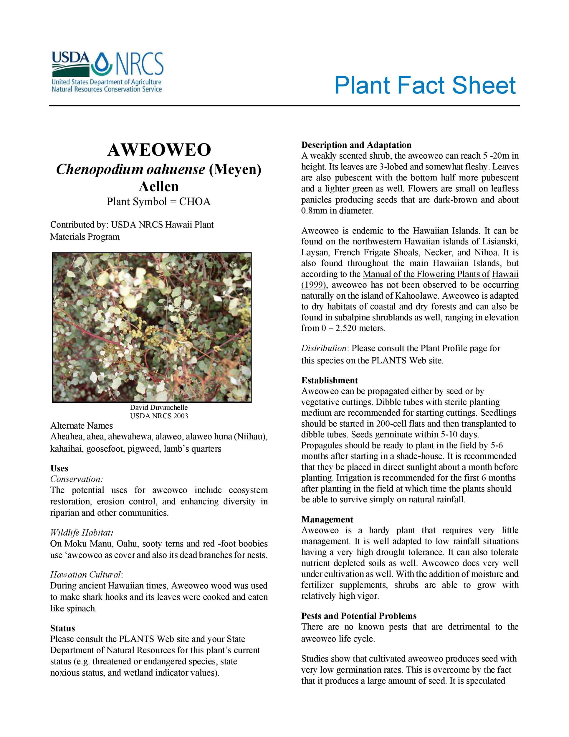 Free Fact sheet Template 50