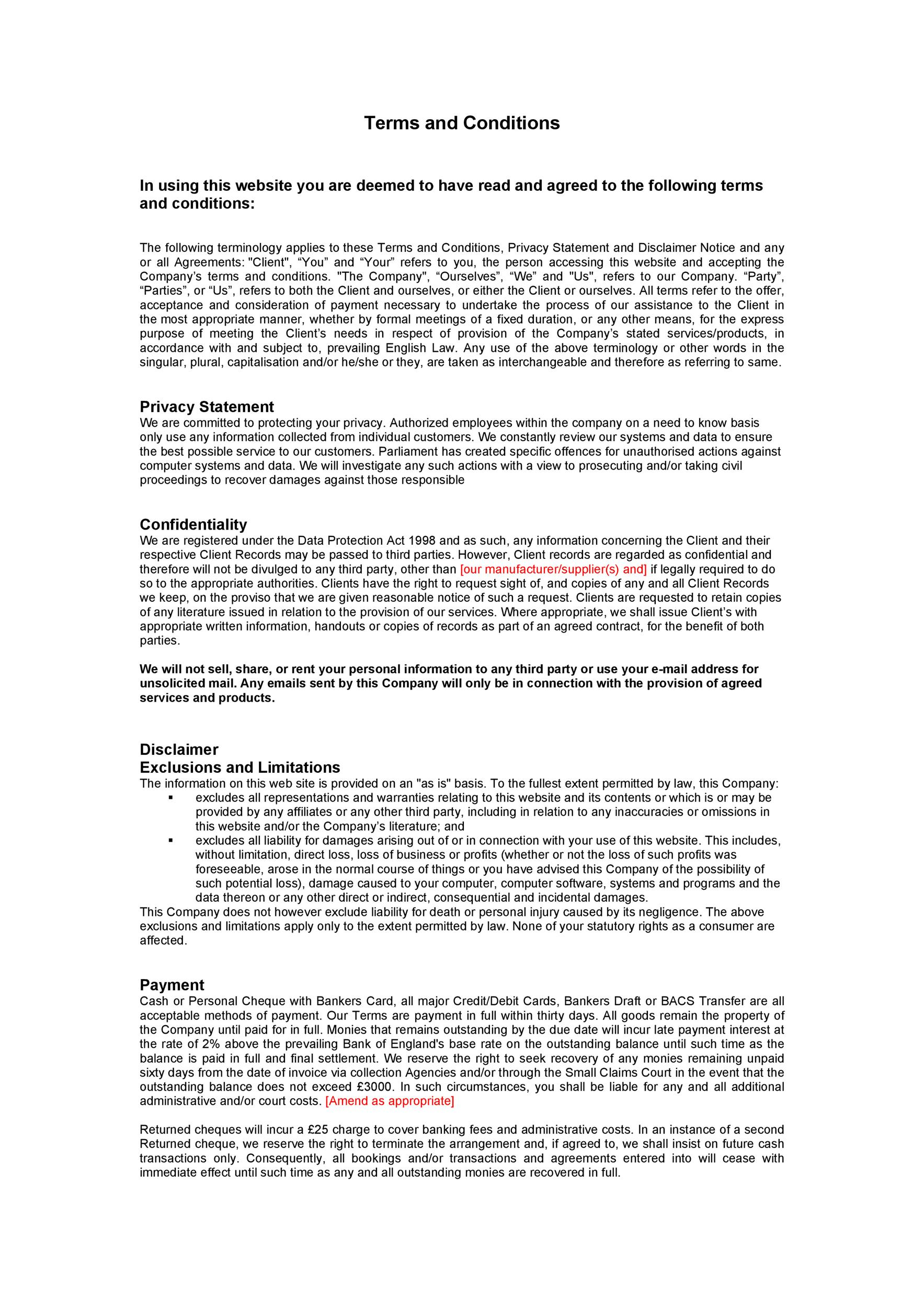 Free terms and conditions template 10