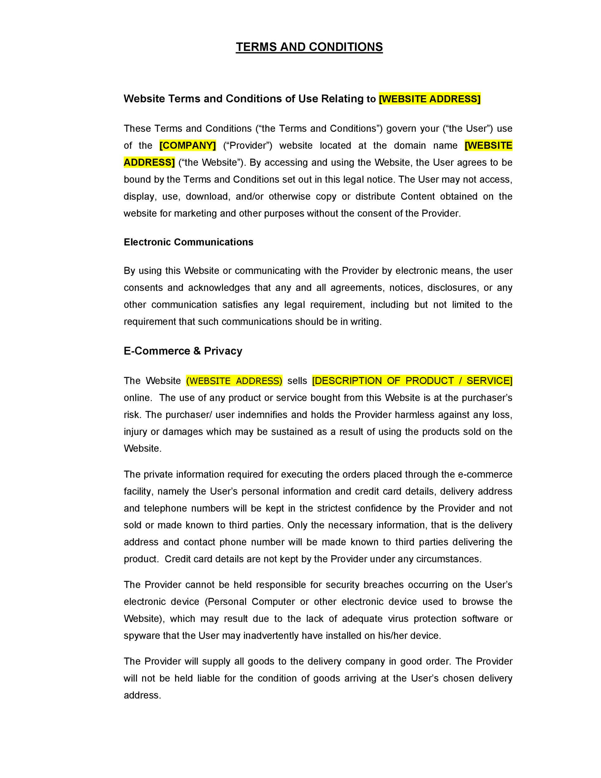Free terms and conditions template 16