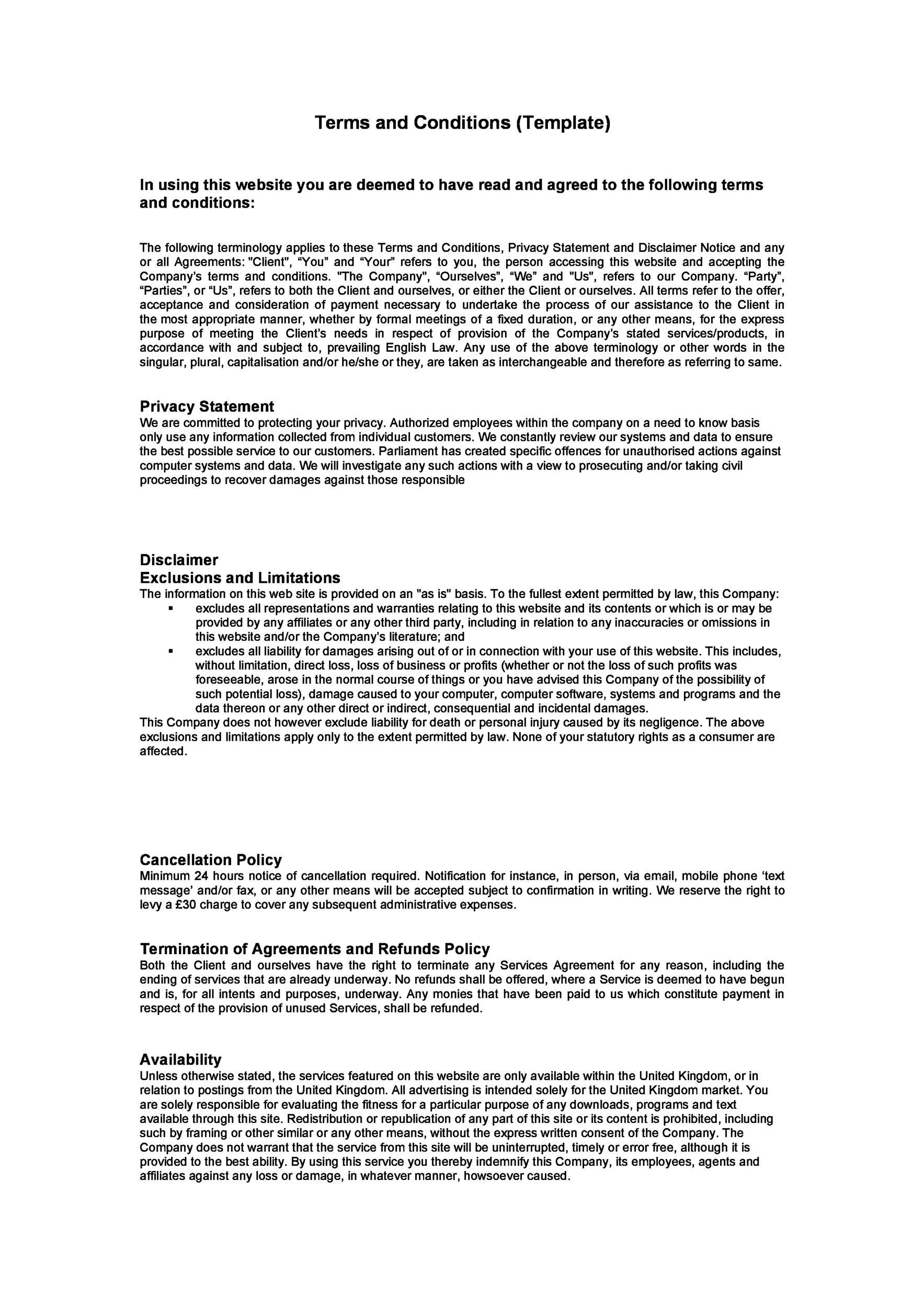 Free terms and conditions template 25