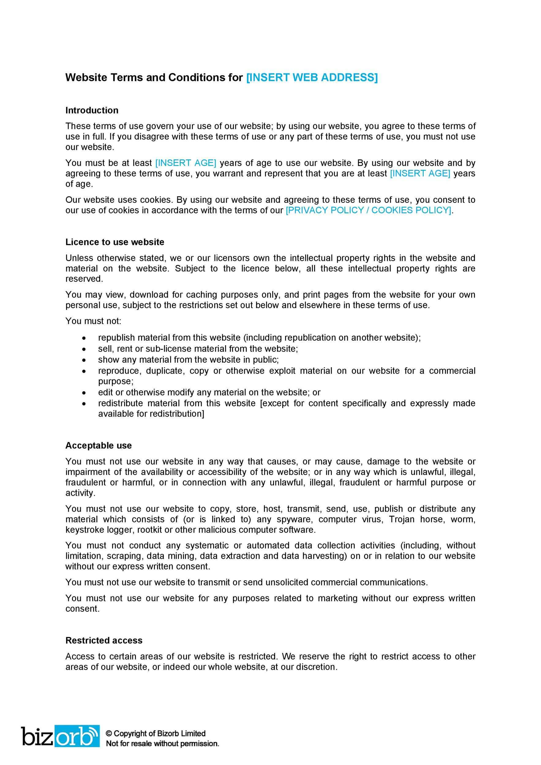 free terms and conditions template 28