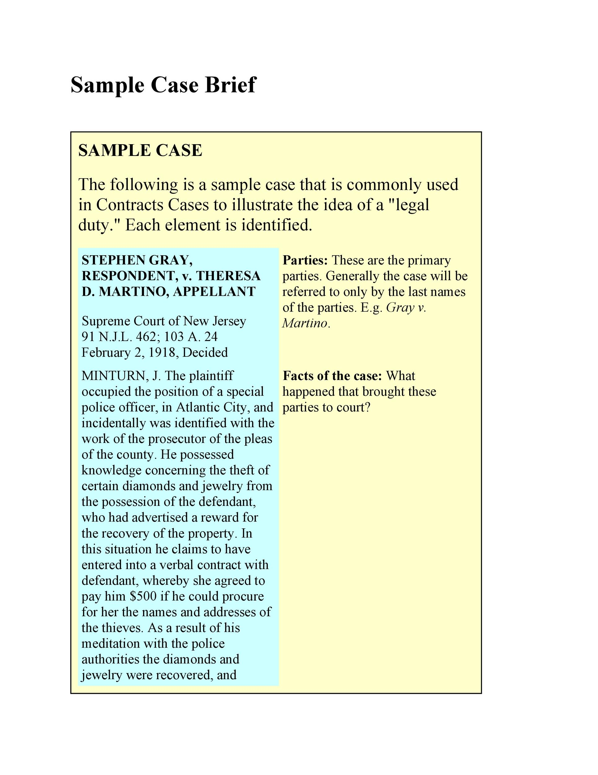 Free case brief template 17