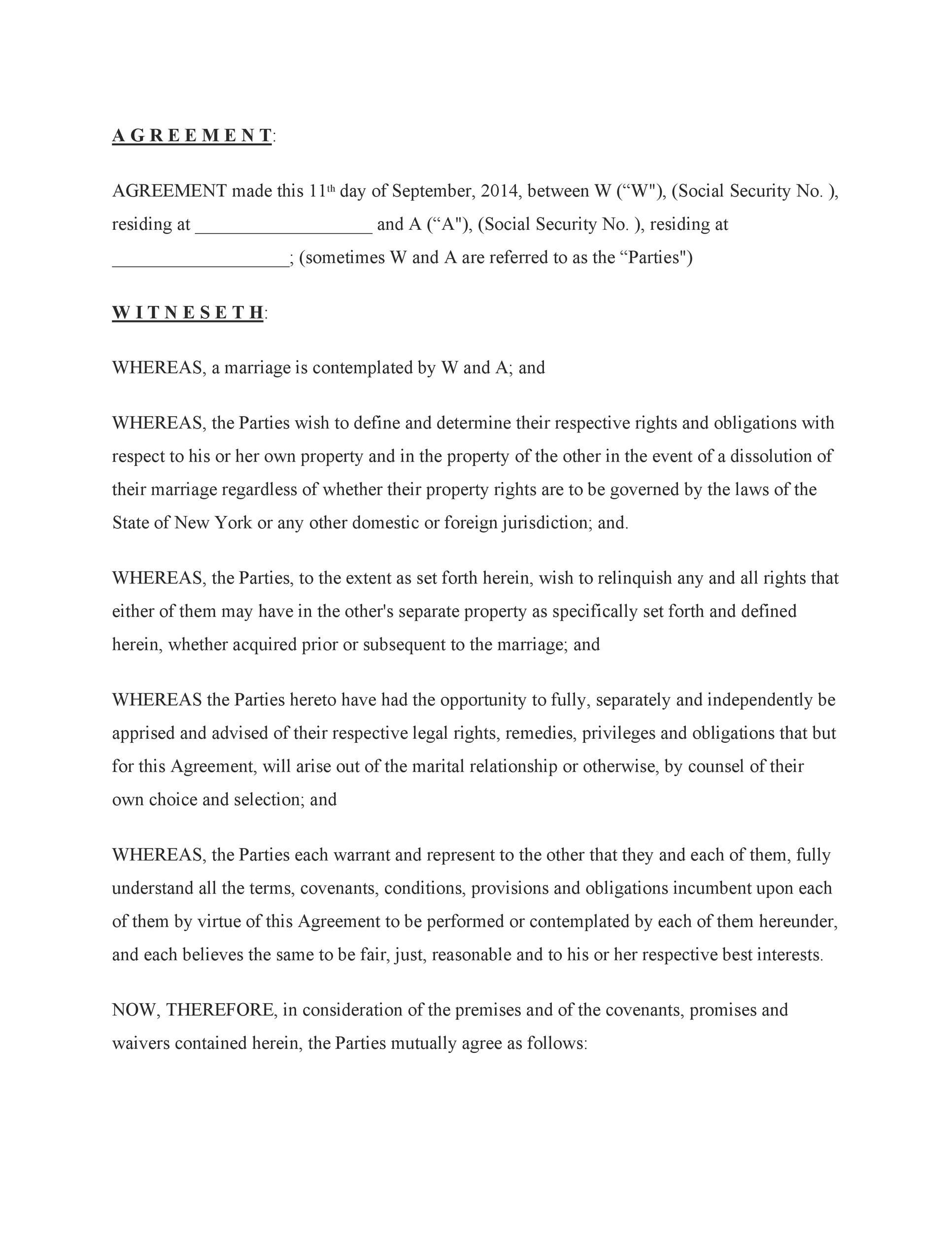 Free cohabitation agreement template 17