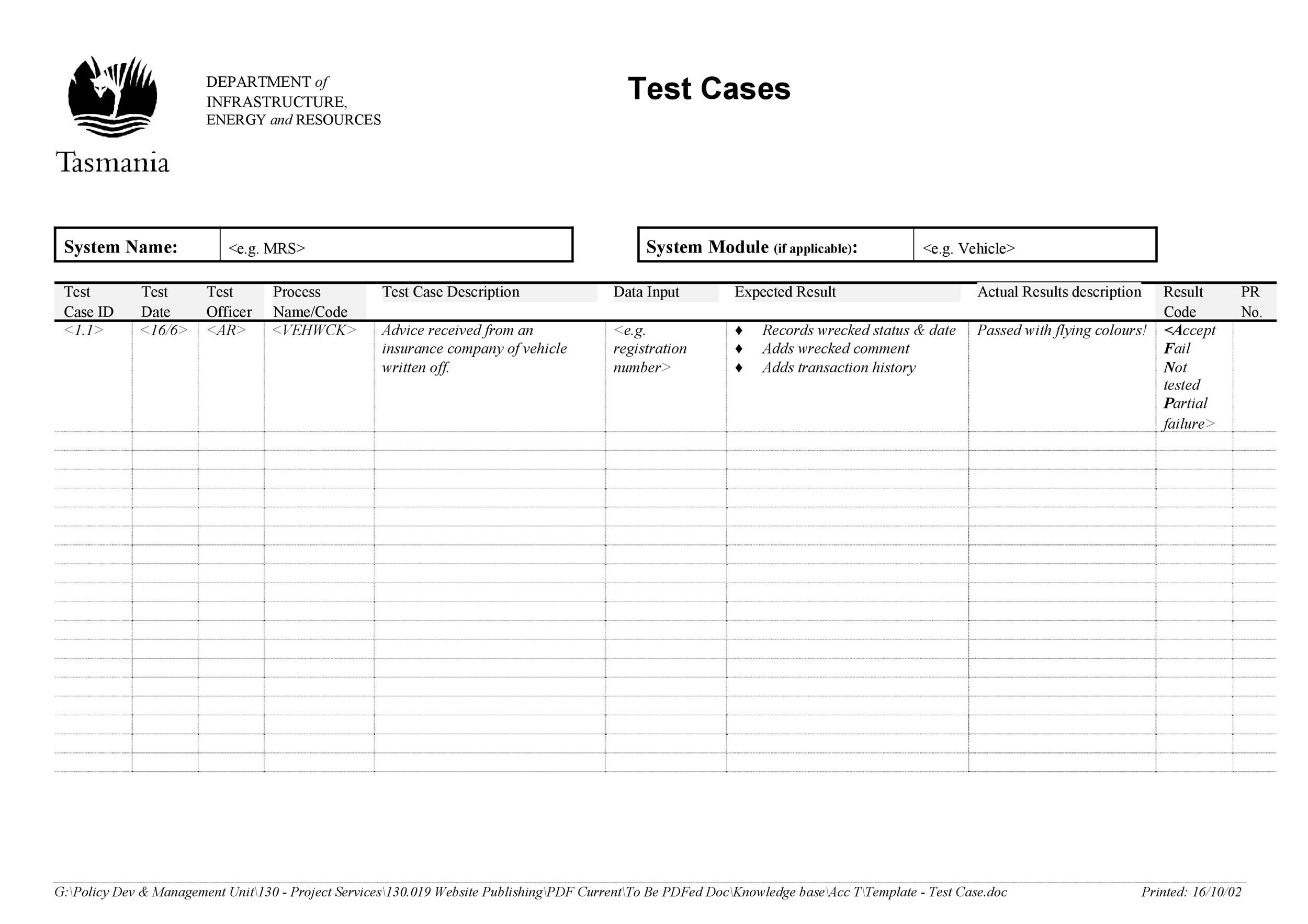 Free test case template 30
