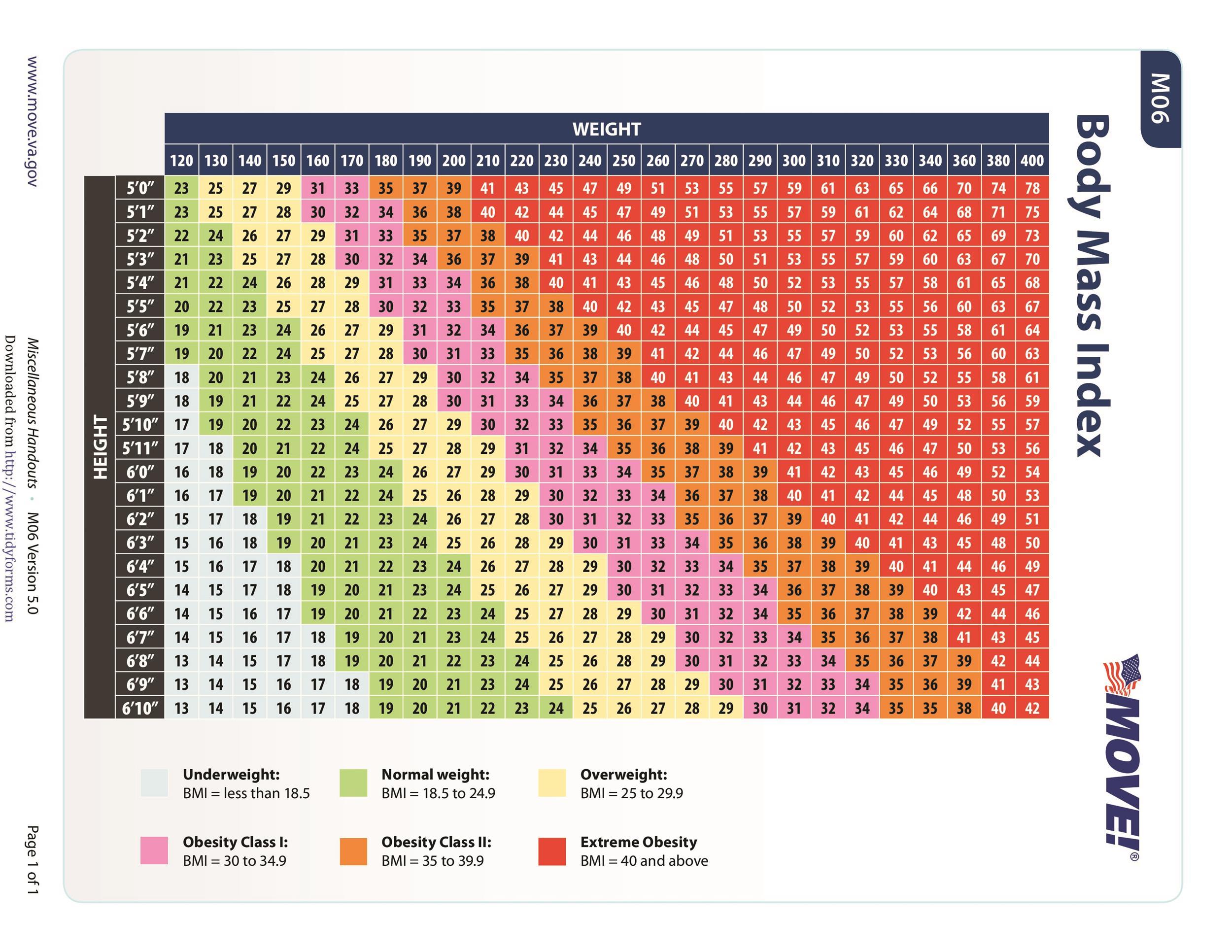Free bmi chart 15
