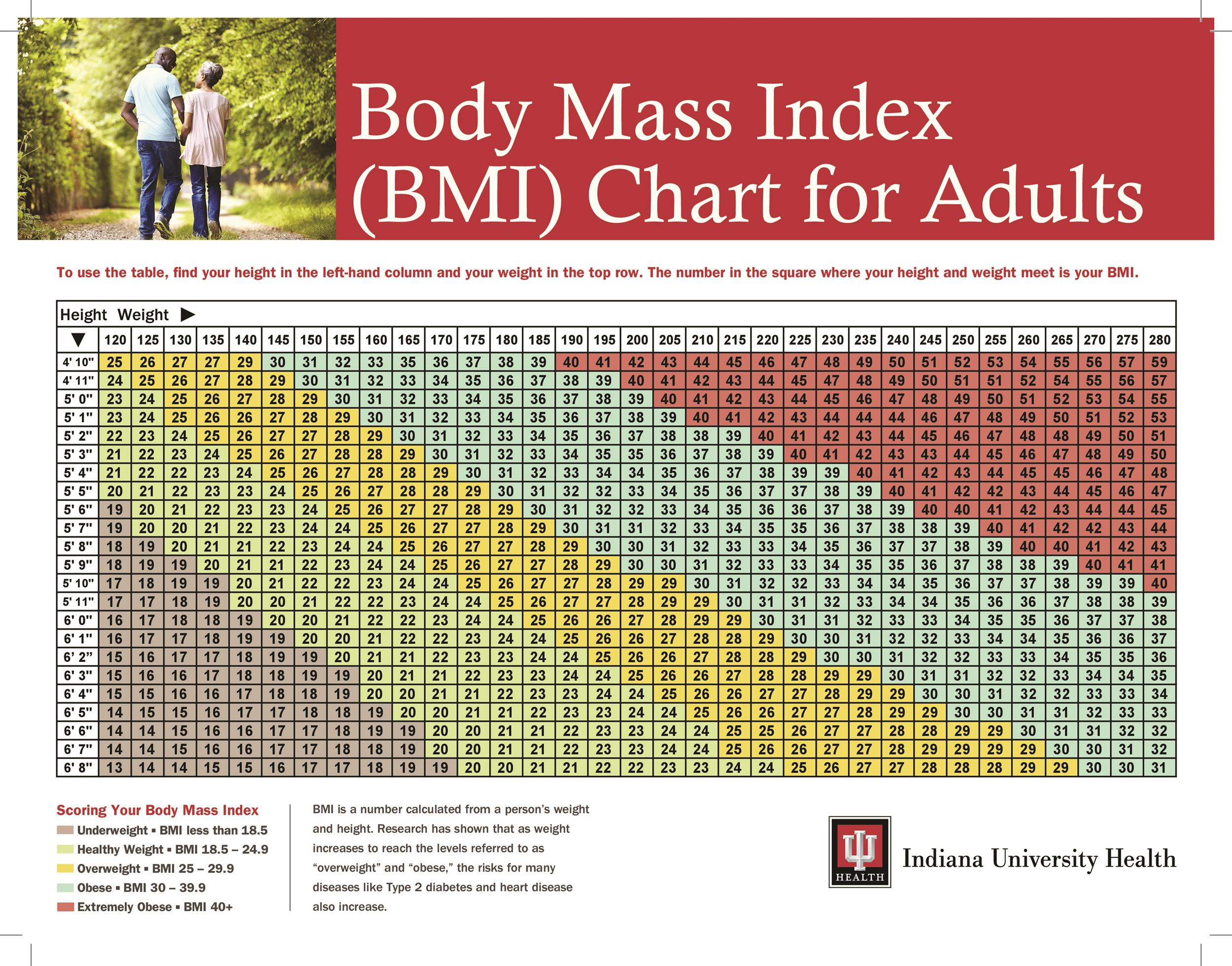 image about Printable Bmi Chart identified as 36 Absolutely free BMI Chart Templates (for Girls, Adult men or Little ones) ᐅ