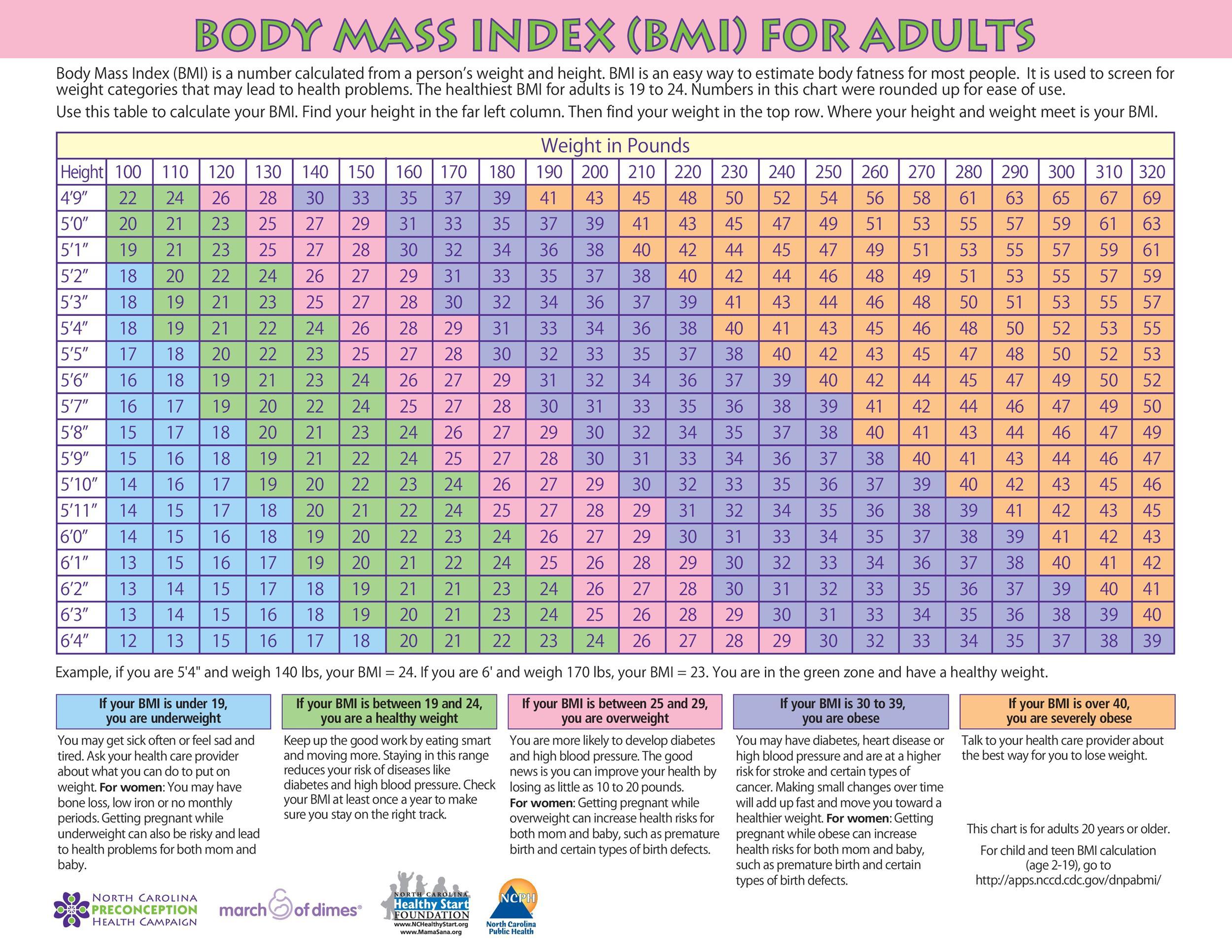 Free bmi chart 24