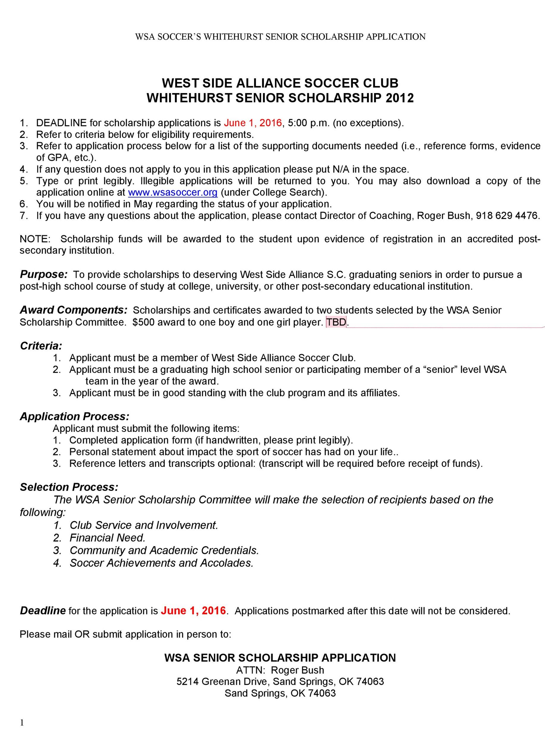 Free Scholarship Application Template 48