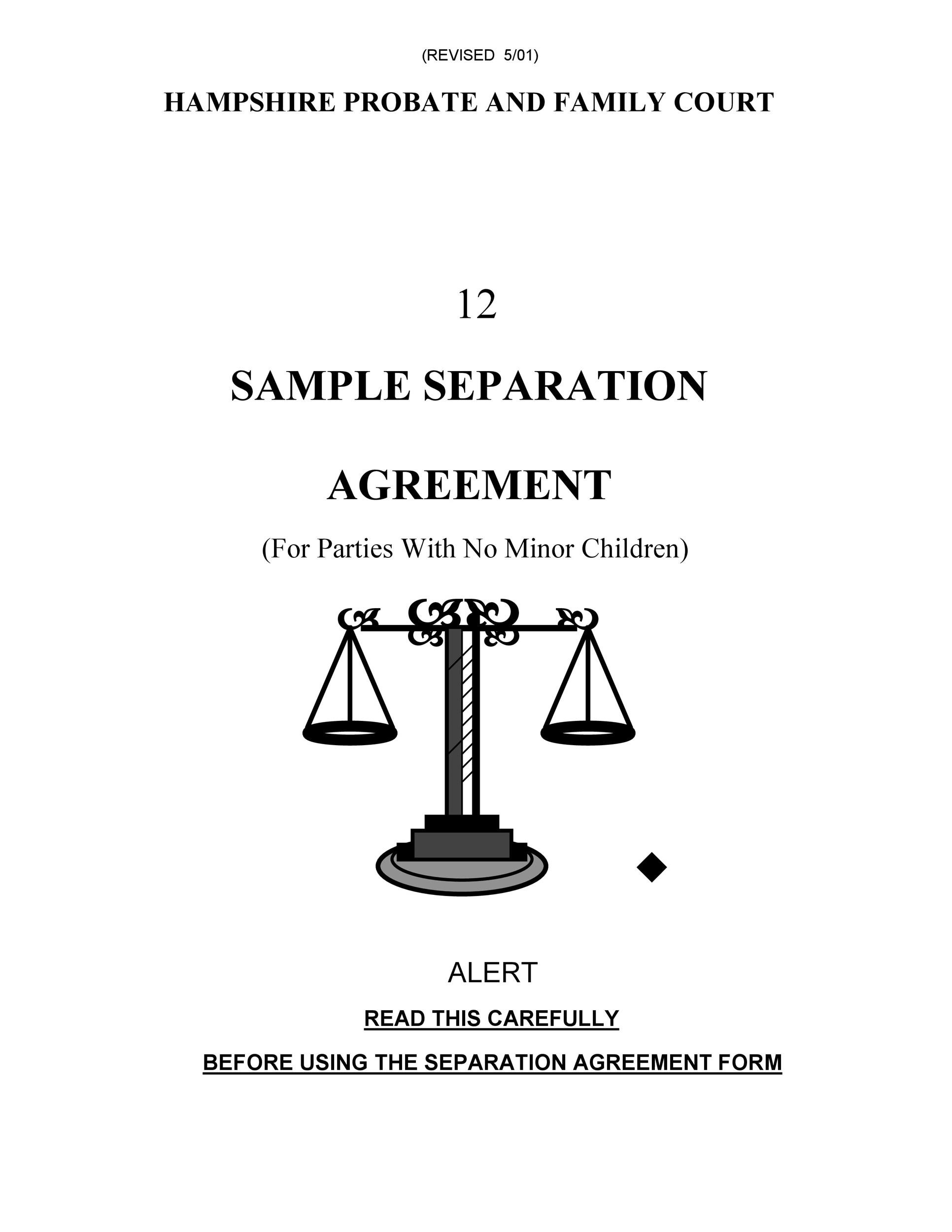 Free Separation Agreement Template 25