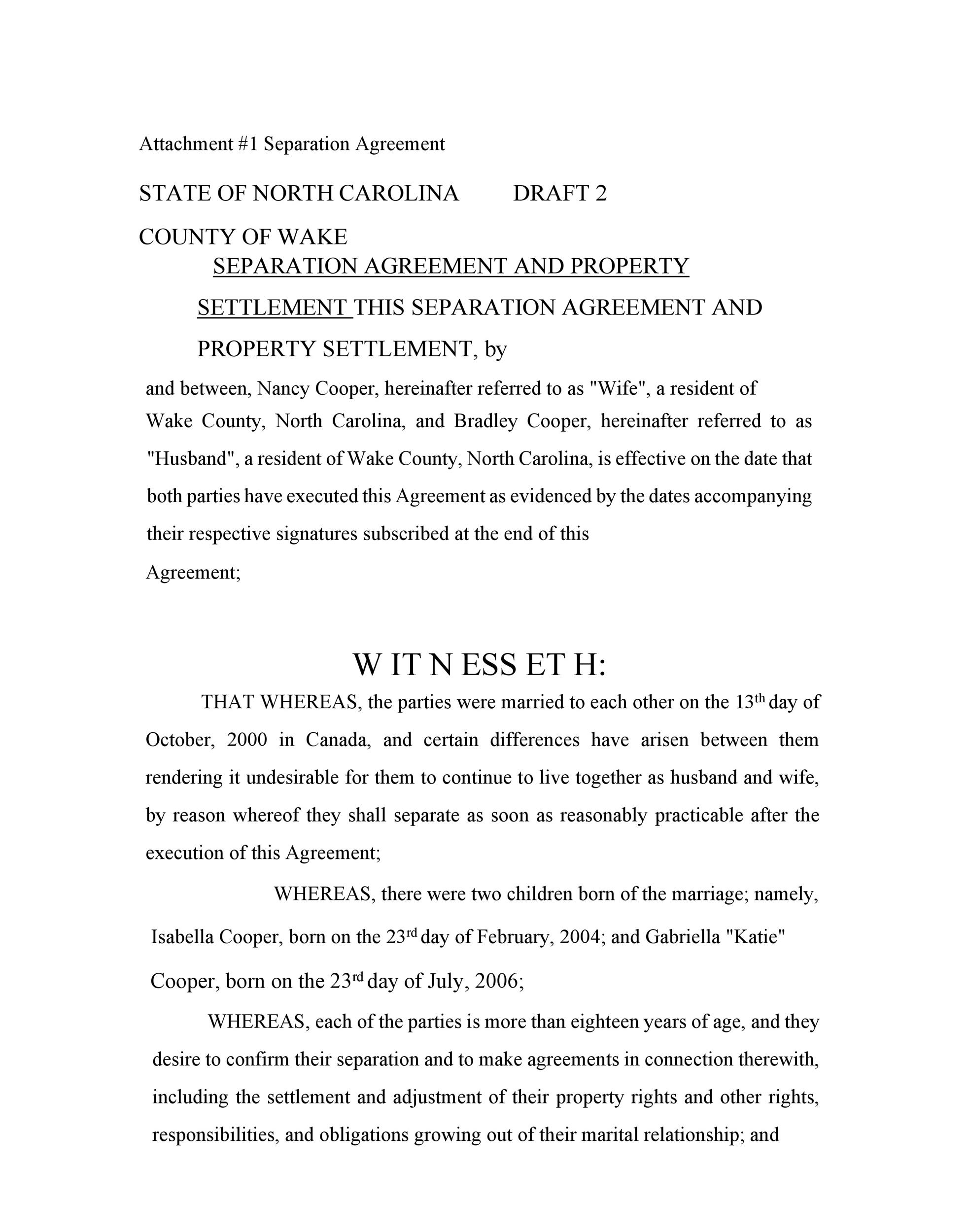 Free Separation Agreement Template 37
