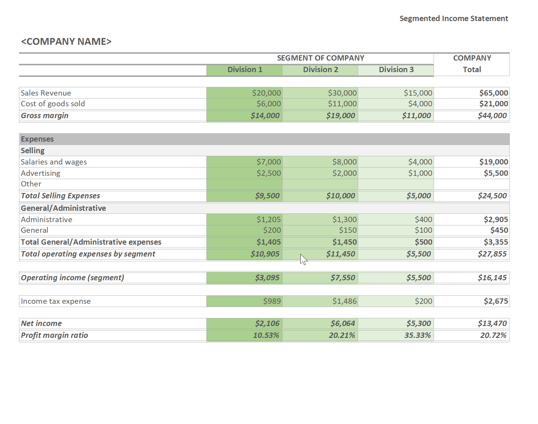 Free Segmented Income Statement