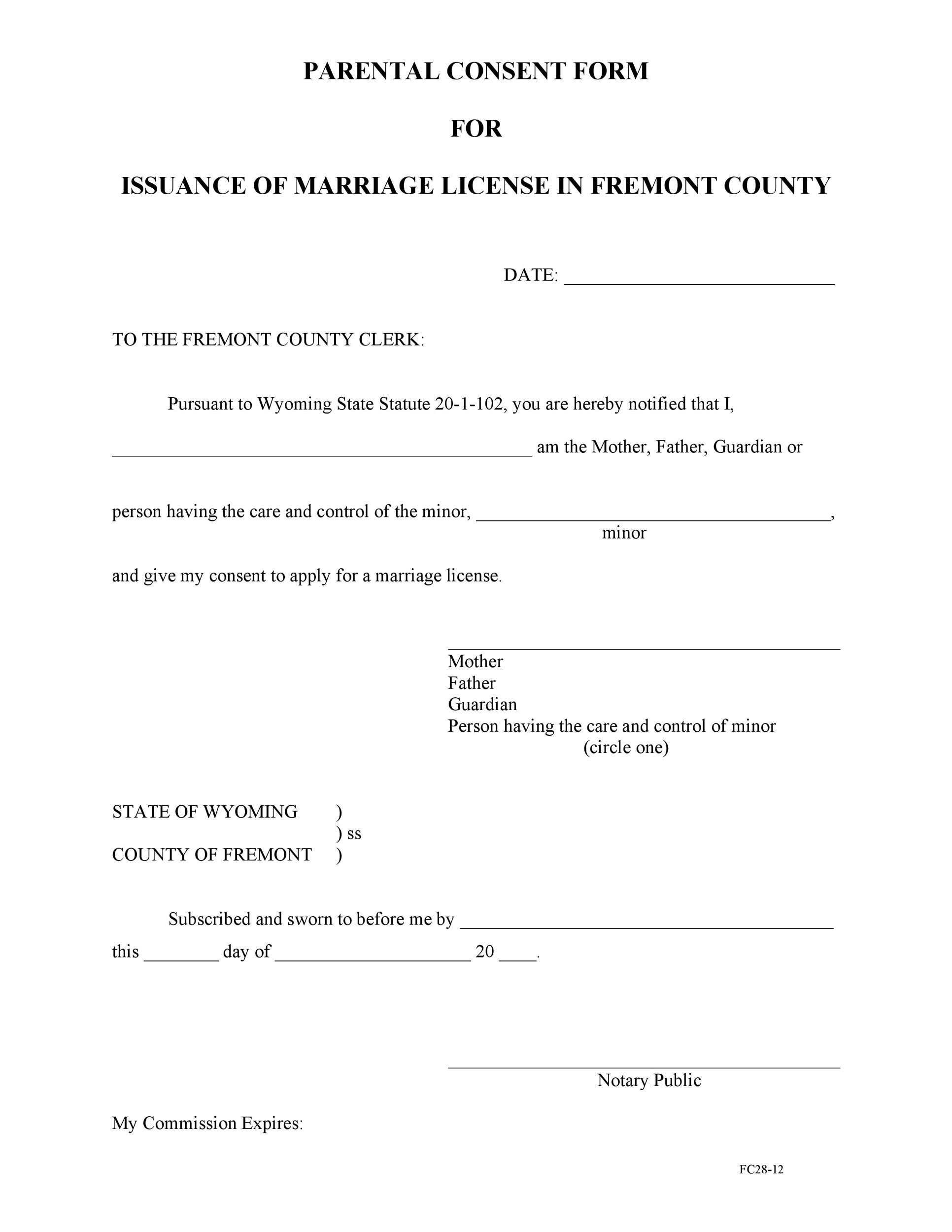 Free parental consent form template 24