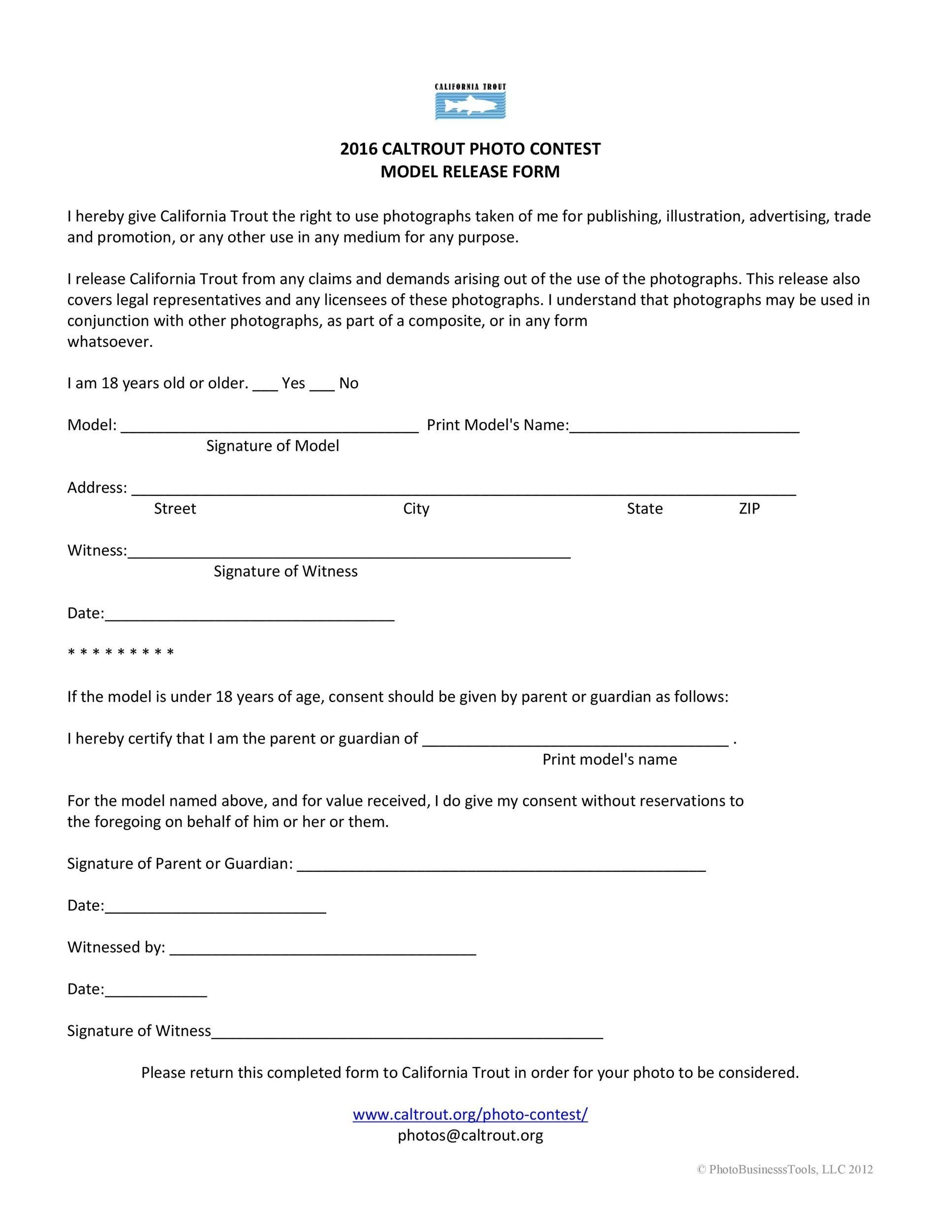 Free model release form 29