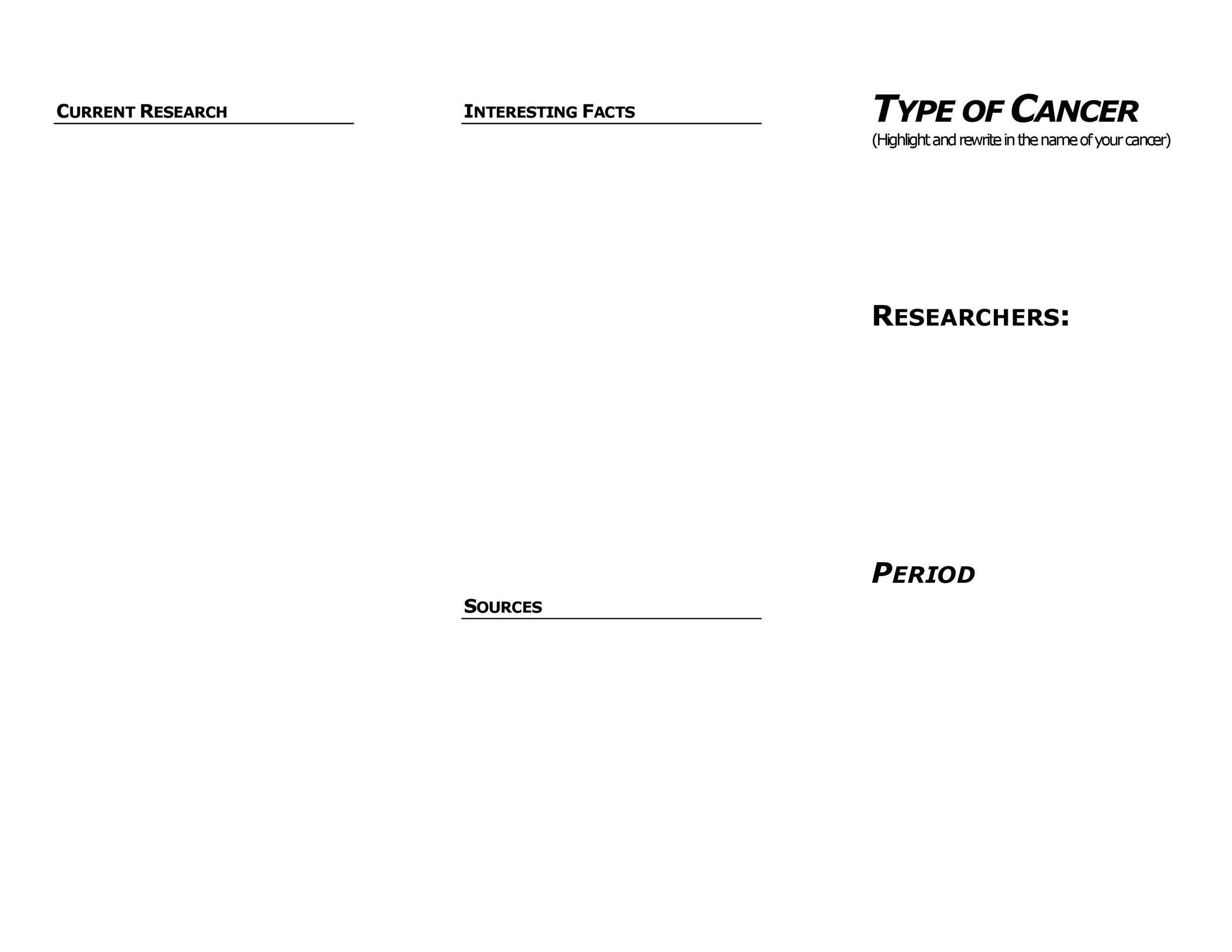 Free pamphlet template 16