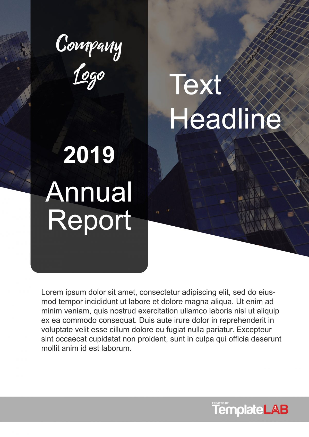 Free Report Cover Page 6
