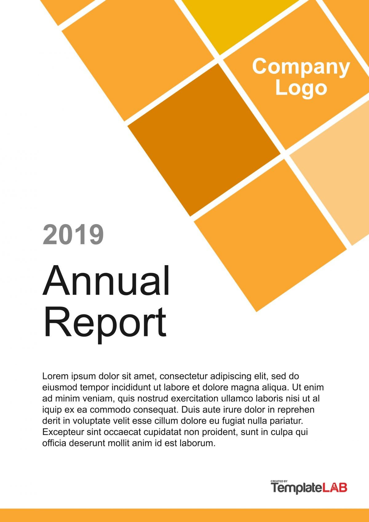 Free Report Cover Page 7 - TemplateLab