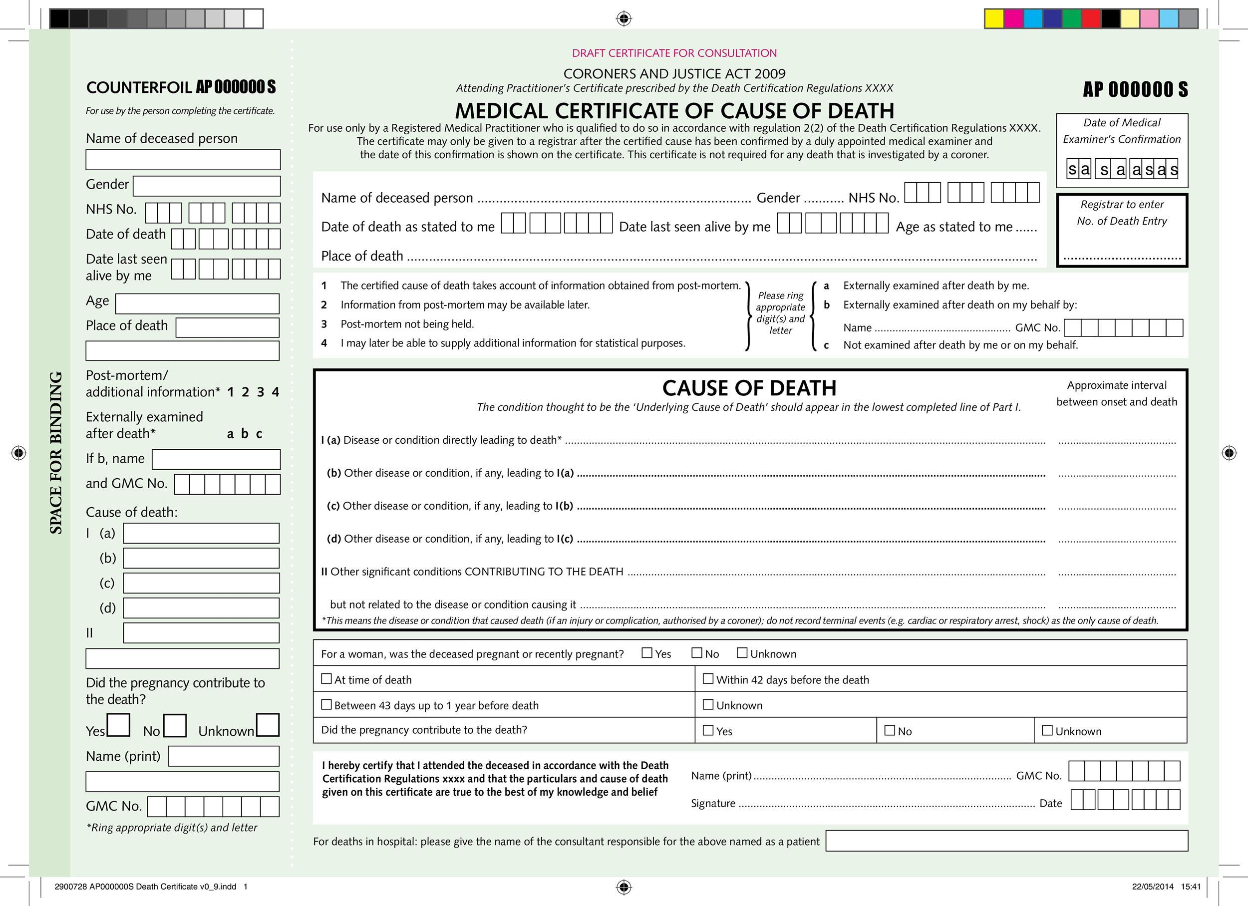 Free death certificate template 10