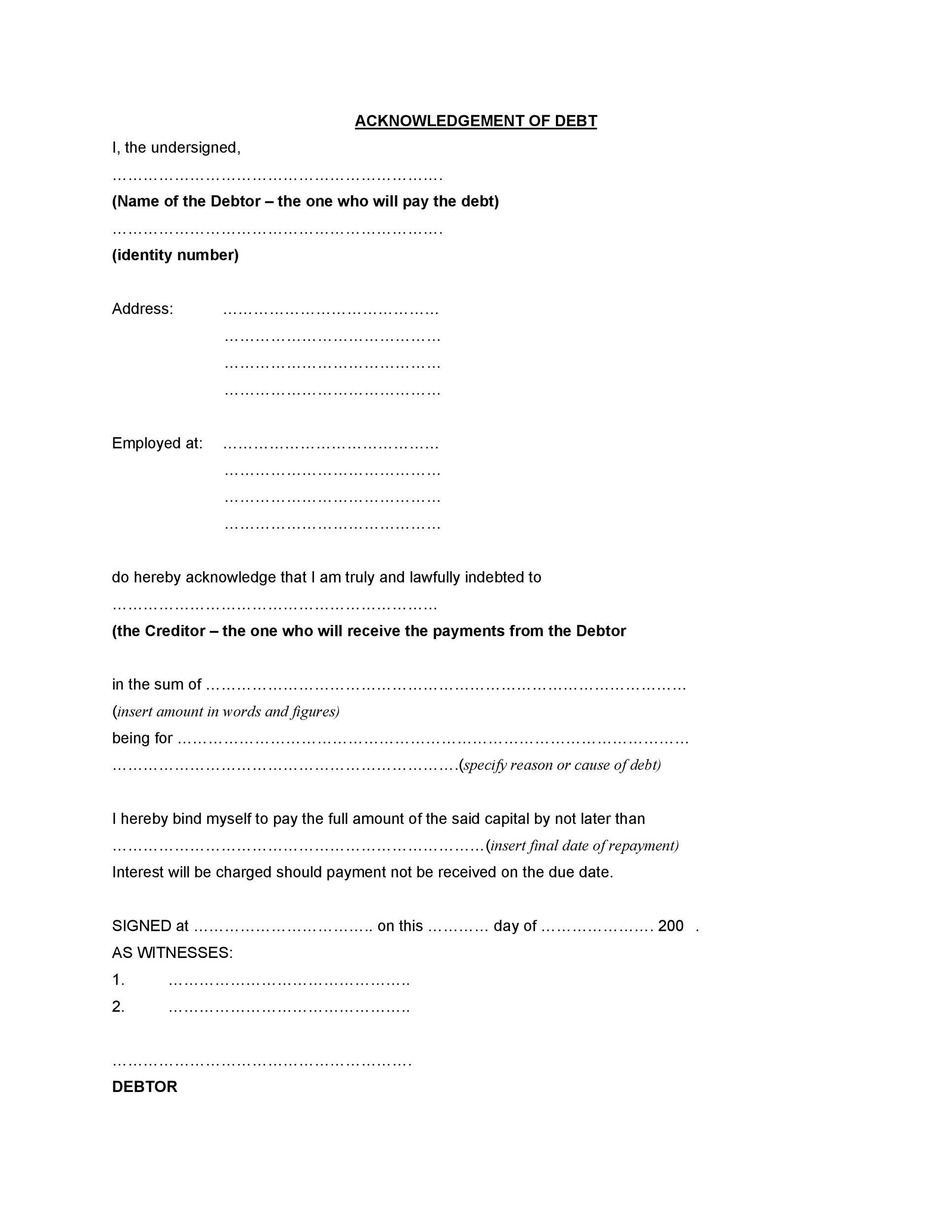 Free iou template 29