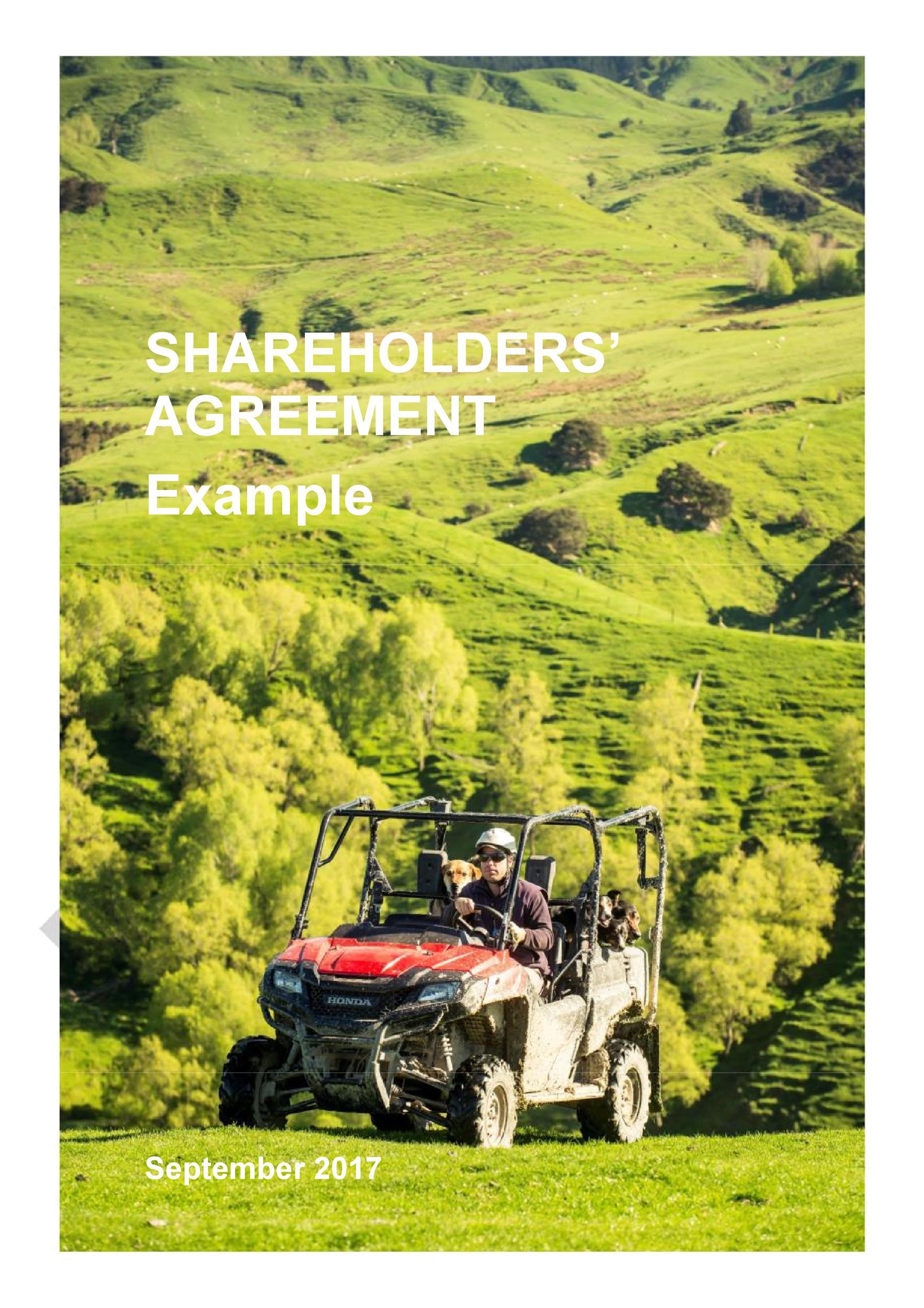 Free shareholder agreement 05