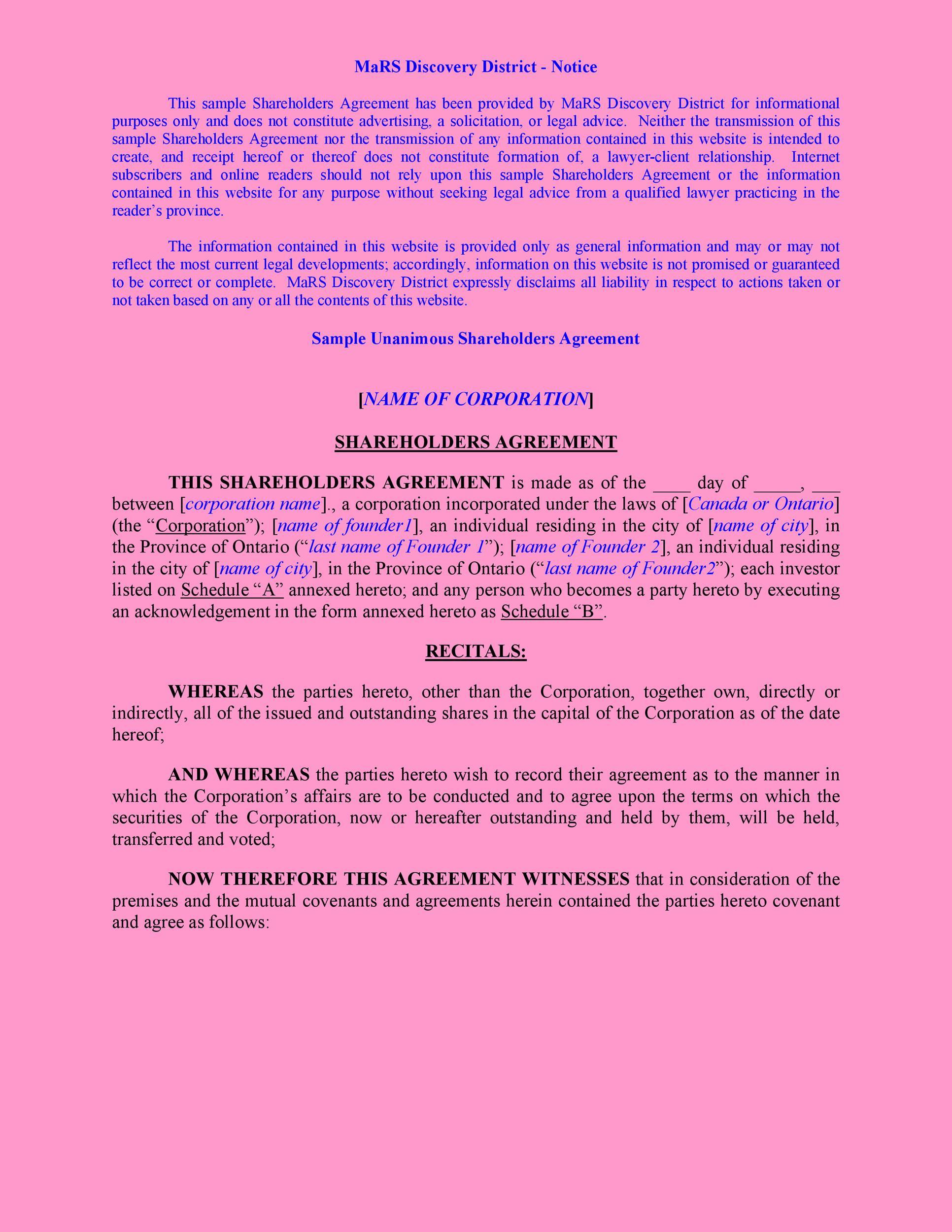 Free shareholder agreement 41