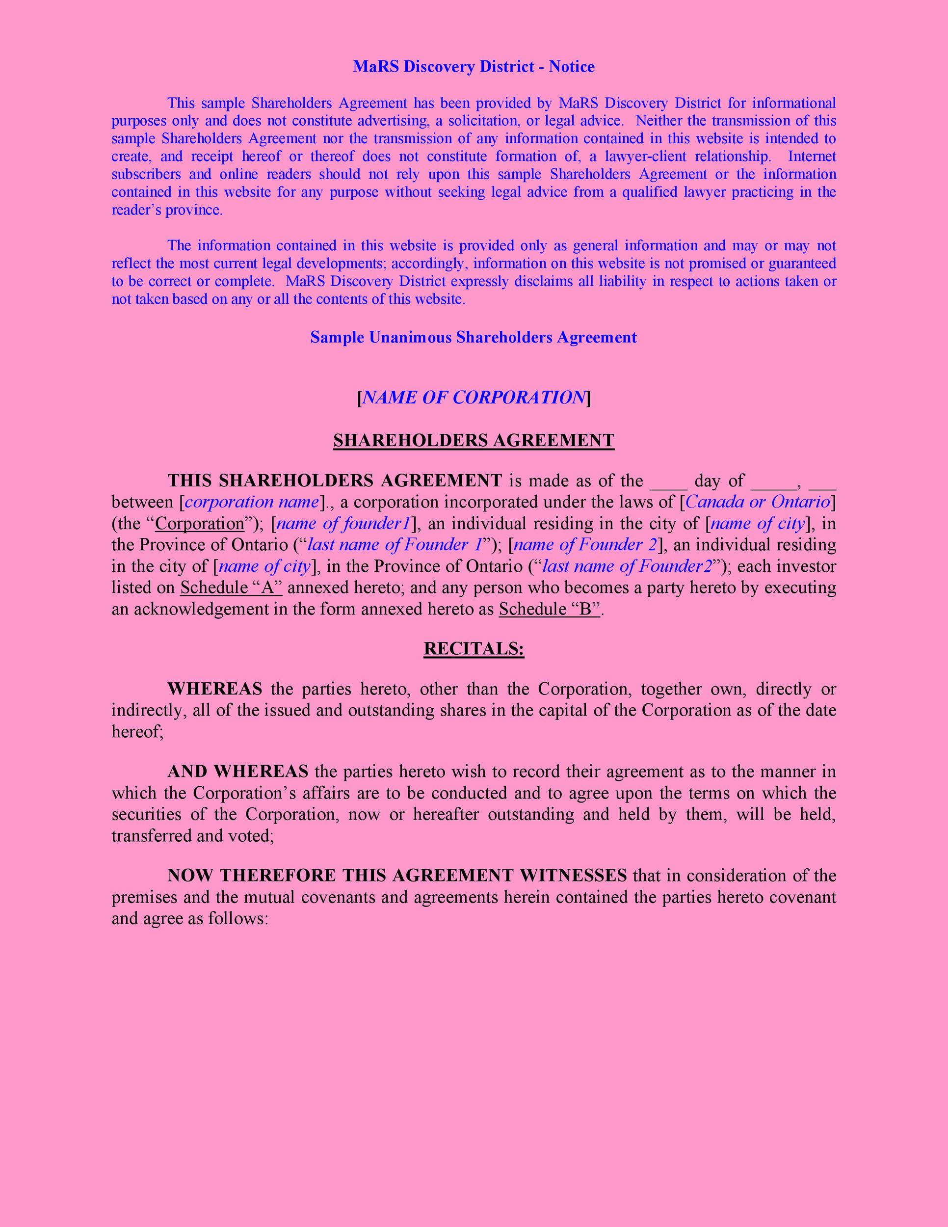 Free shareholder agreement 41