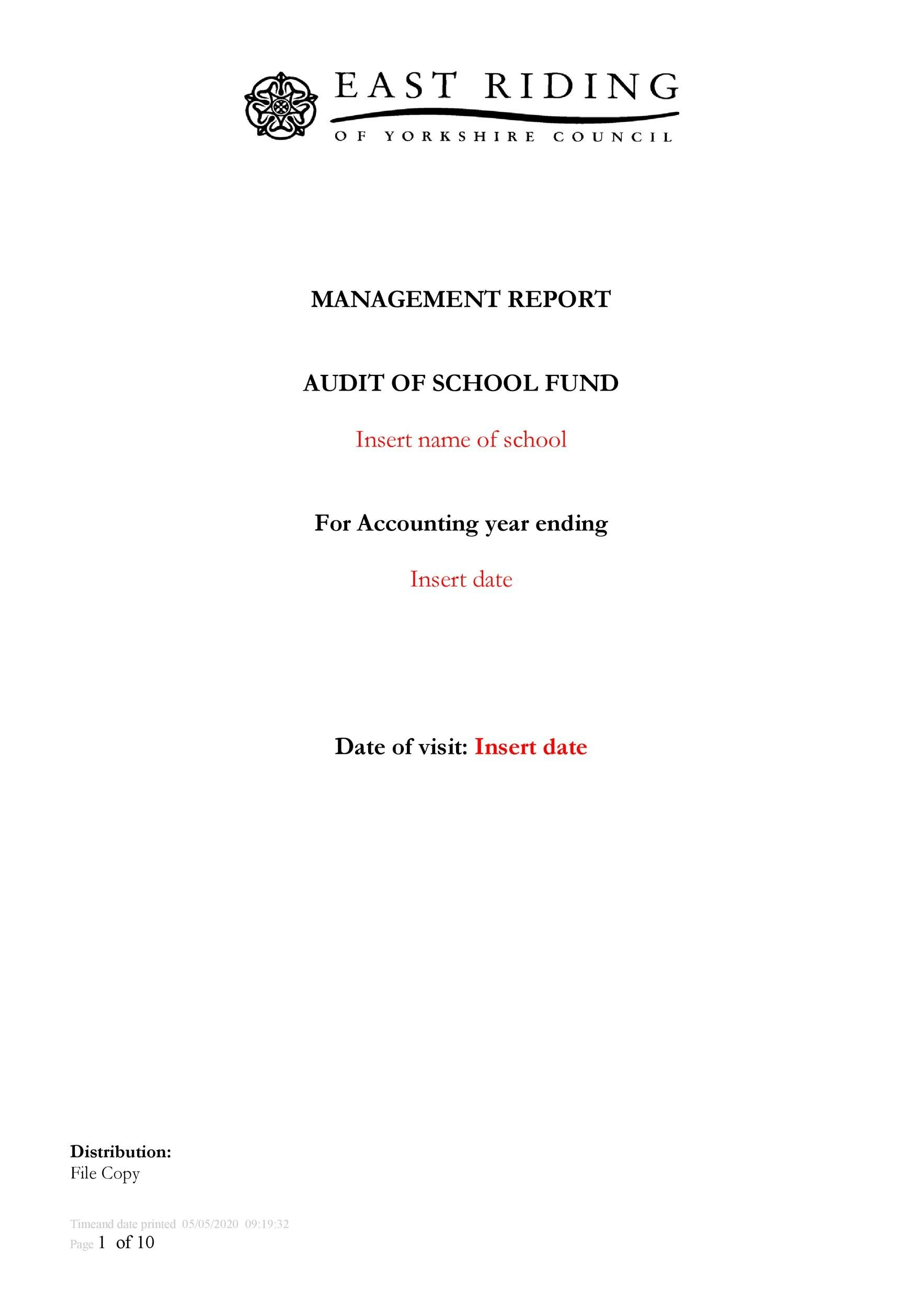 Free audit report template 07