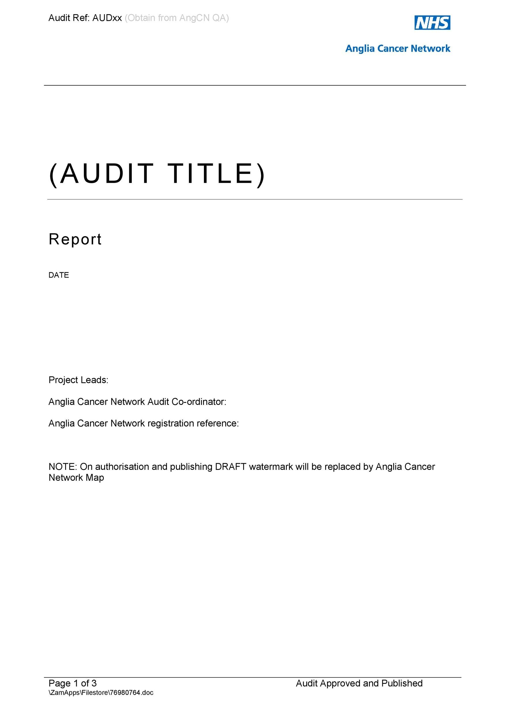 Free audit report template 09