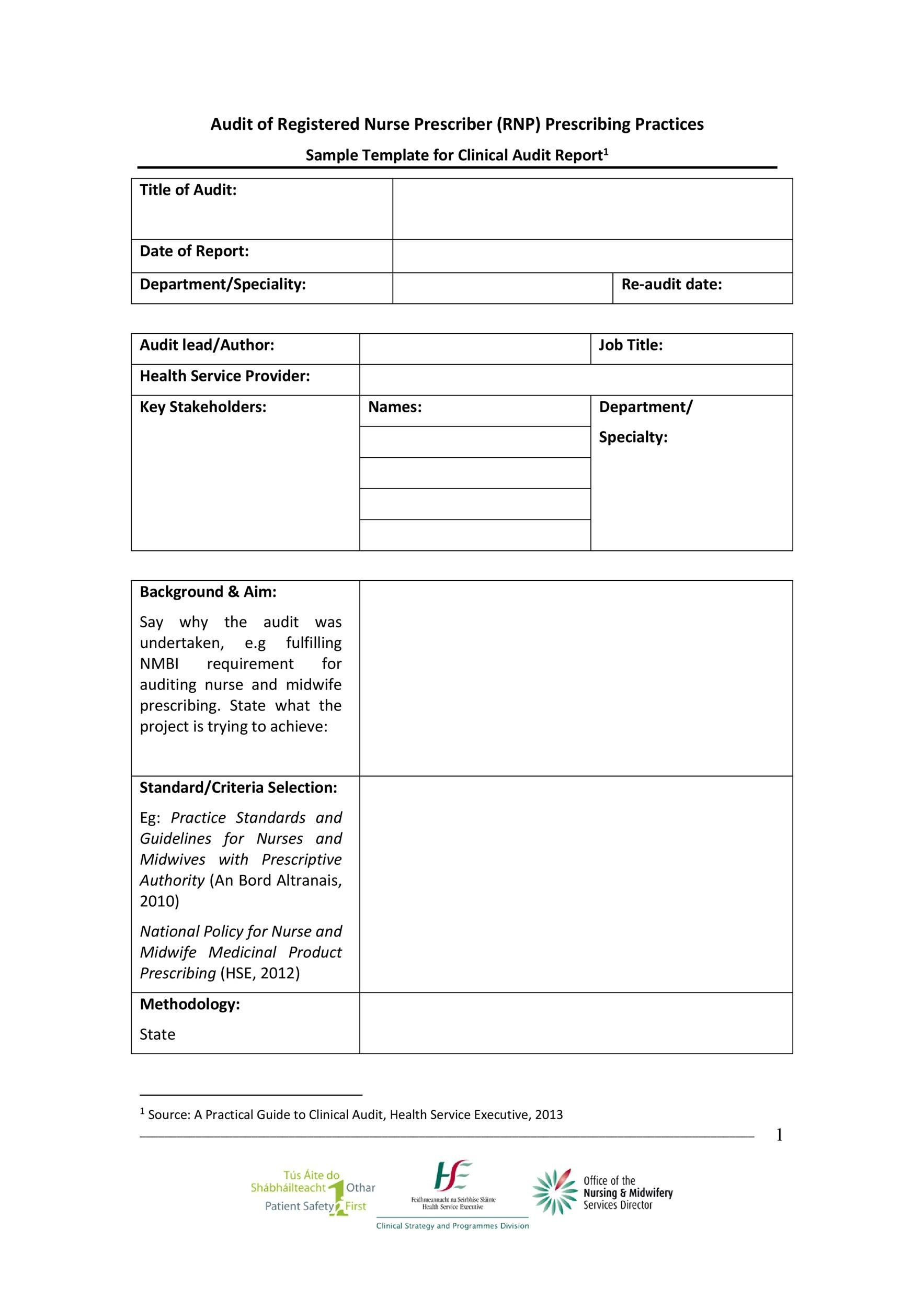 Free audit report template 17