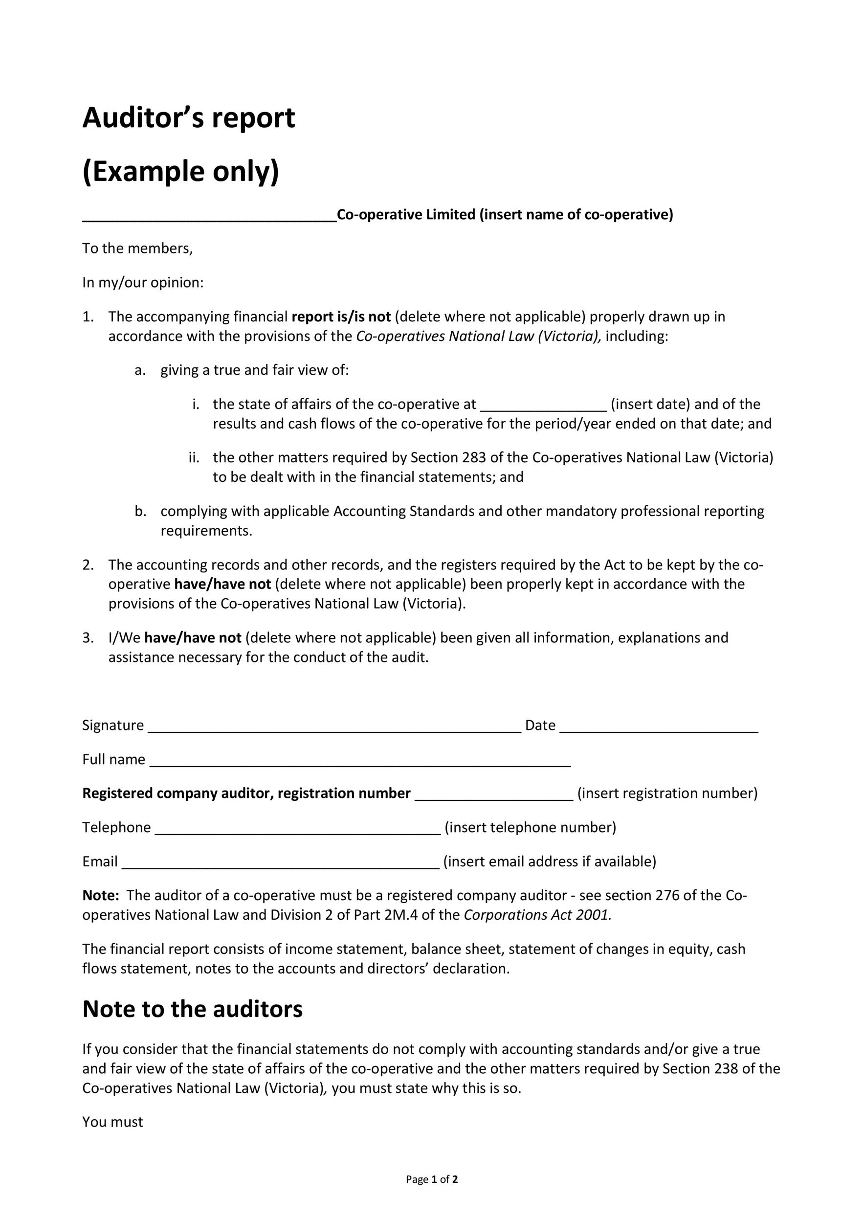 Free audit report template 18