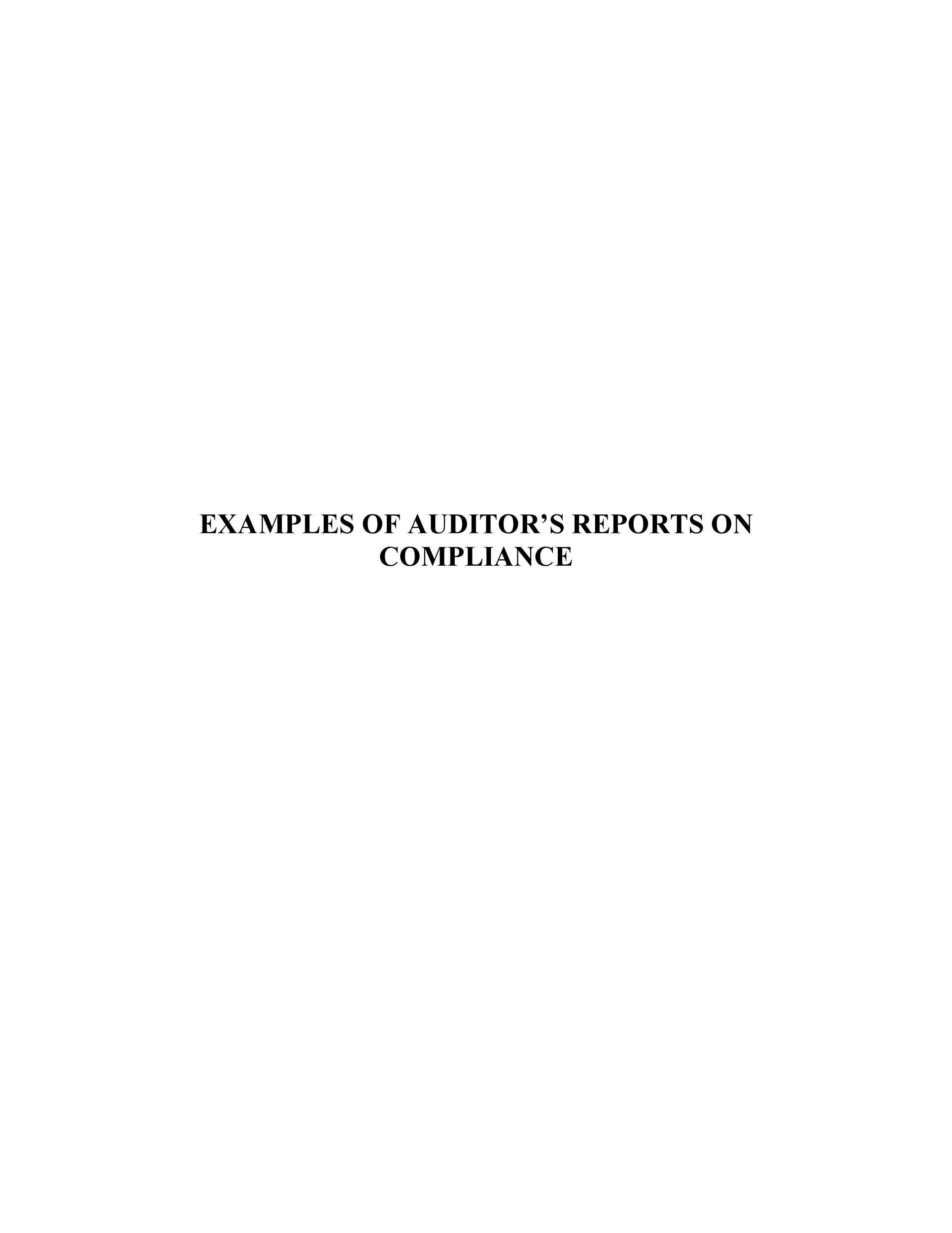 Free audit report template 26