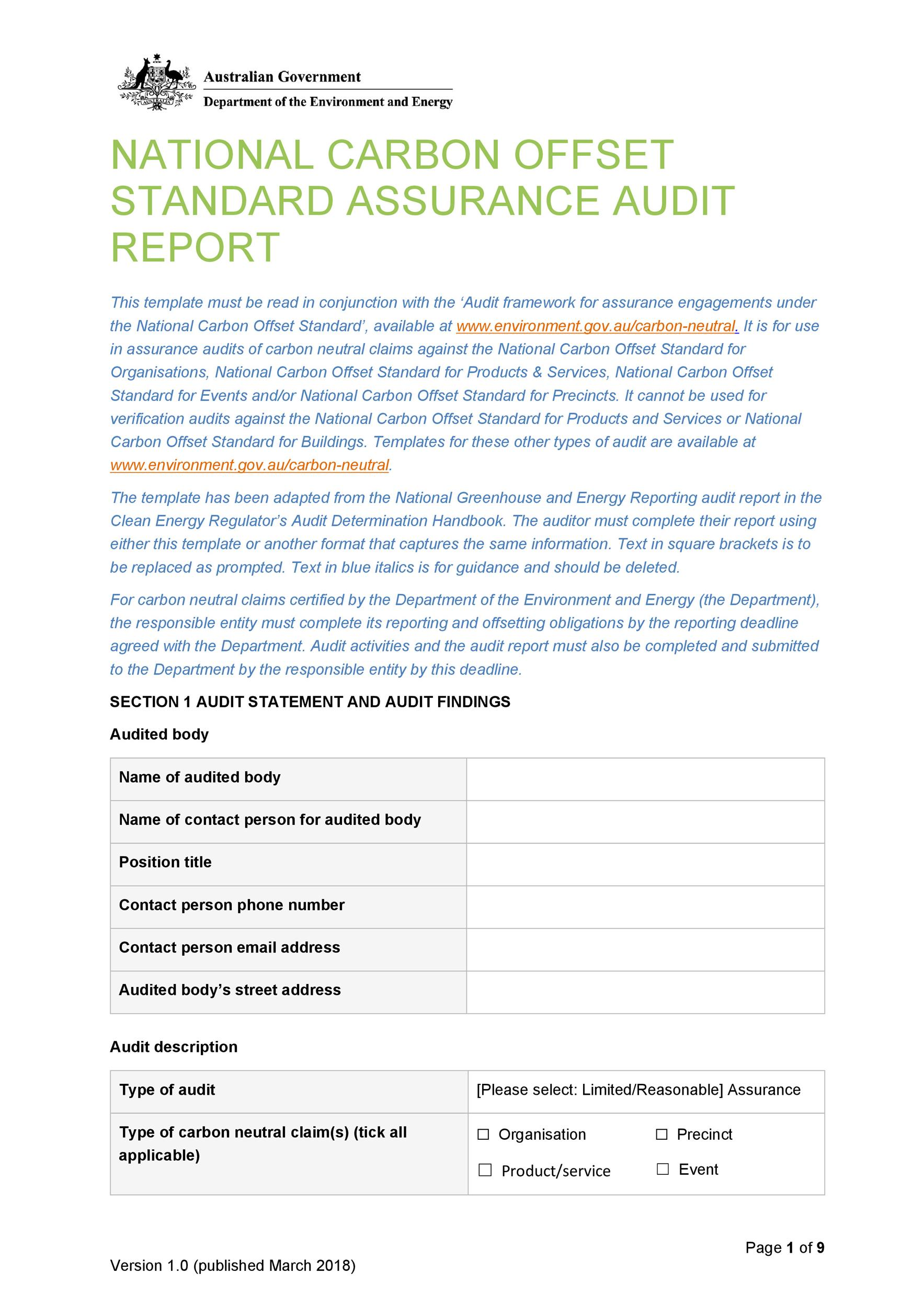 Free audit report template 29