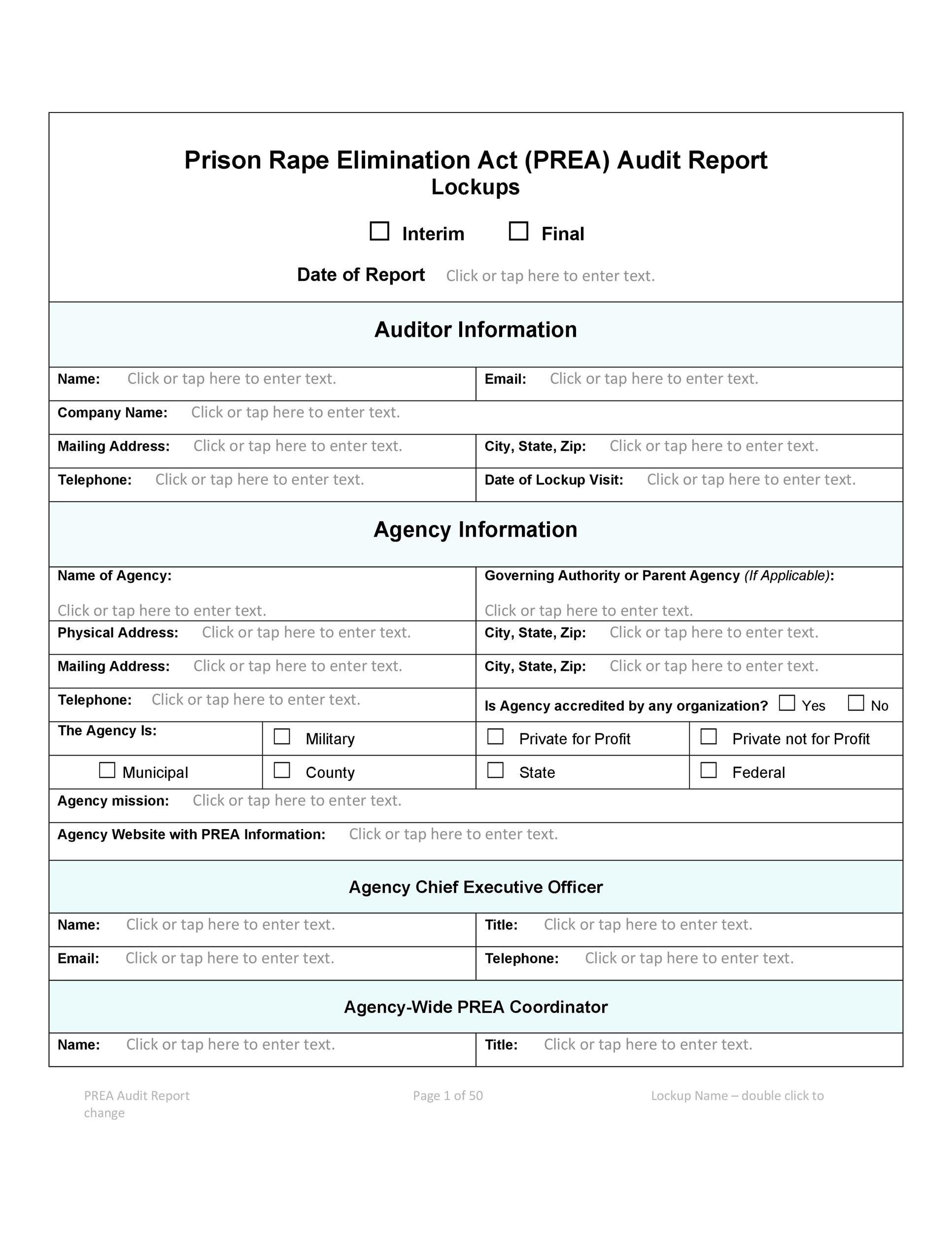 Free audit report template 30